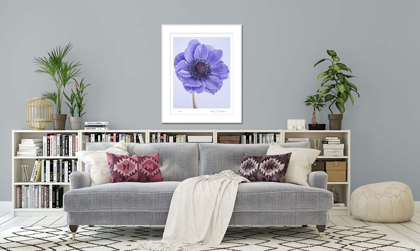 Blue anemone on a pale blue background. Limited edition botanical print by fine art photographer Paul Coghlin