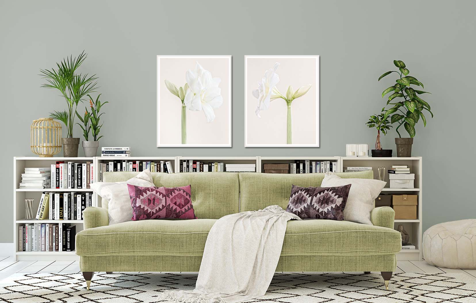 """Two prints of White Nymph I + II - white Hippeastrum """"White Nymph"""" (commonly known as an Amaryllis). Limited edition floral prints by fine art photographer Paul Coghlin"""