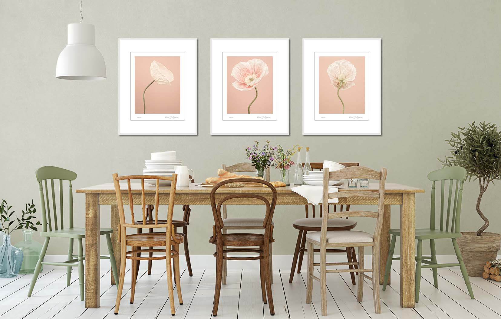 Peach coloured Icelandic Poppies in a dining room setting. Limited edition floral prints by fine art photographer Paul Coghlin.