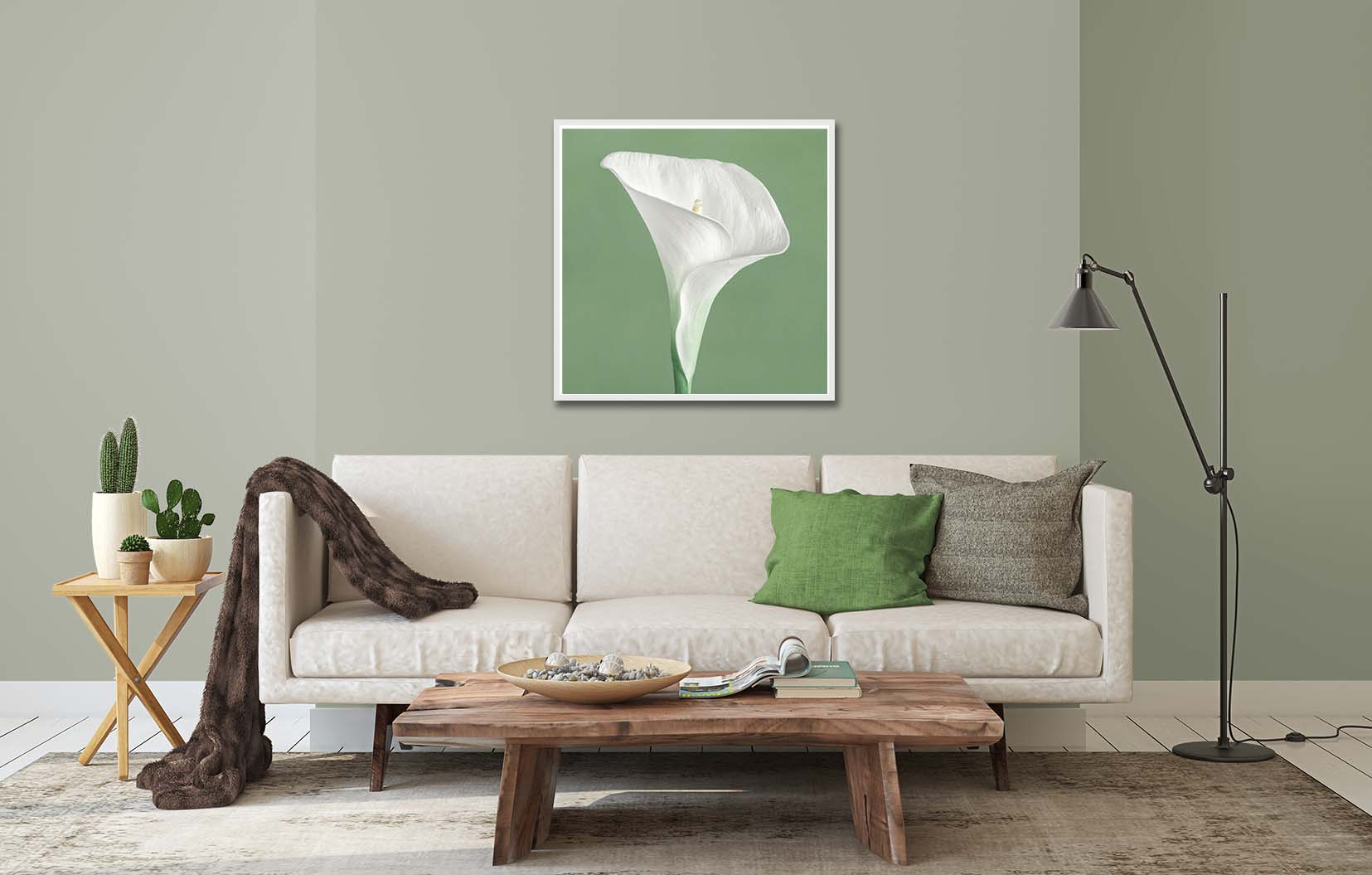Calla Lilly on a green background. Limited edition print by fine art photographer Paul Coghlin. 32x32 inch print shown in a living room setting.