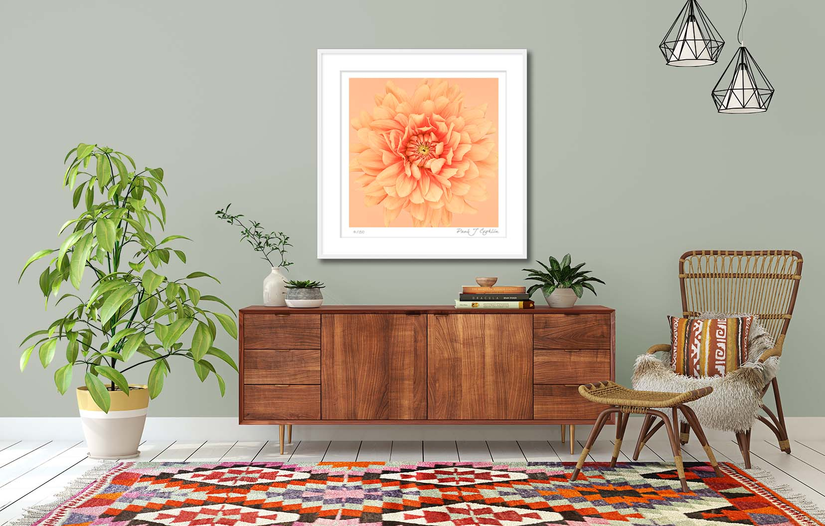 Orange Dahlia Flames II. Limited edition fine art print of an orange dahlia. Botanical prints and floral studies by fine art photographer Paul Coghlin.