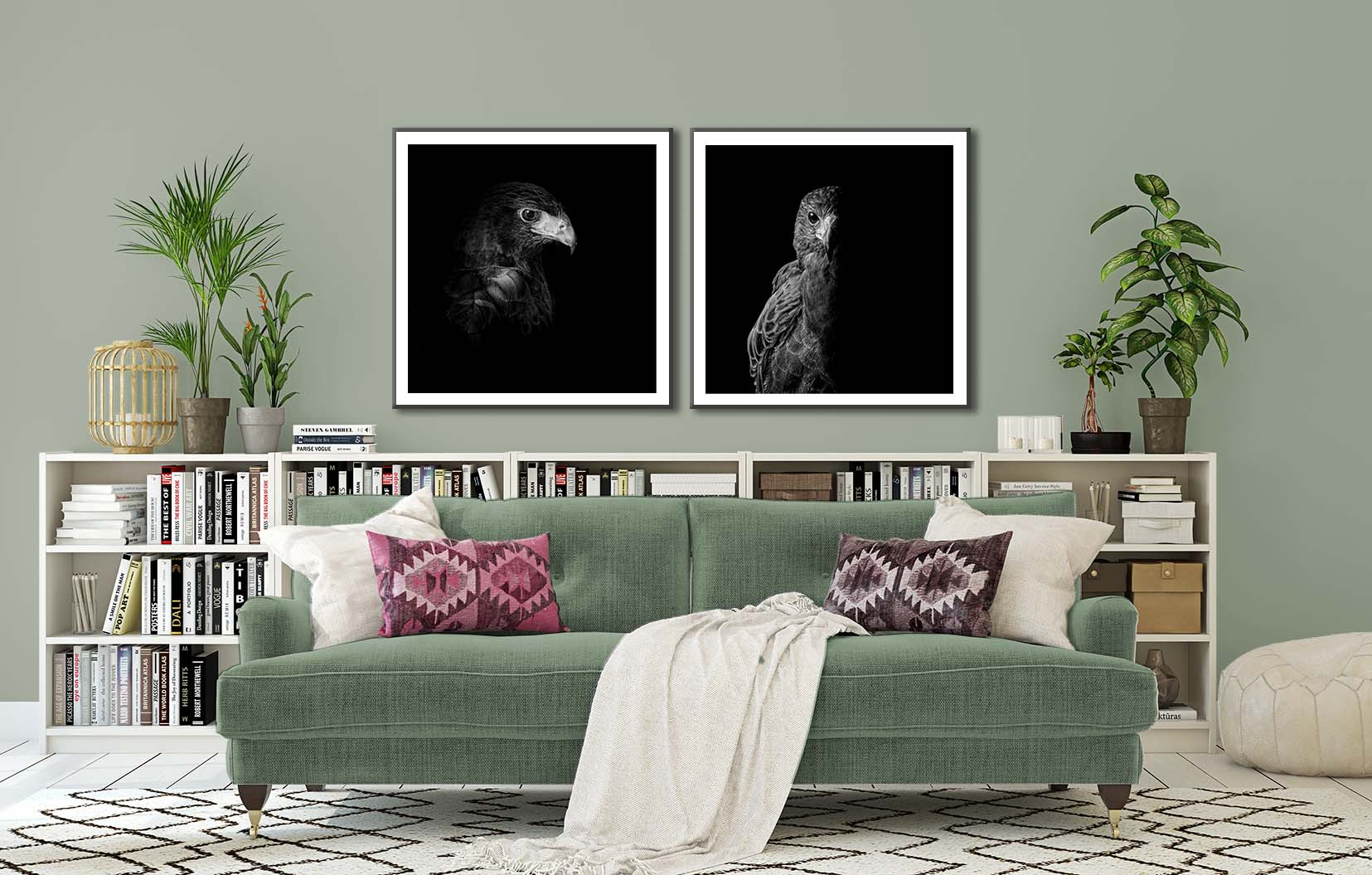 Two black and white limited edition portraits of a Harris Hawk. Bird portraits in the Raptor series by fine art photographer Paul Coghlin.