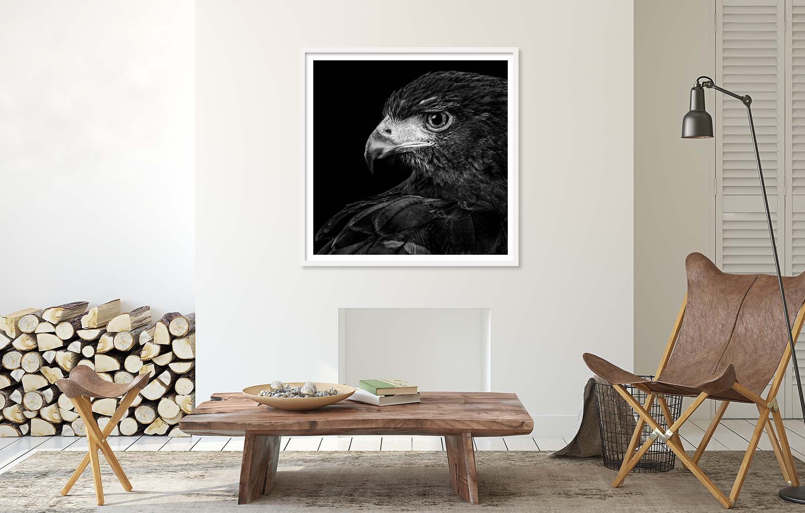 A black and white limited edition portraits of a Harris Hawk. Bird portraits in the Raptor series by fine art photographer Paul Coghlin.