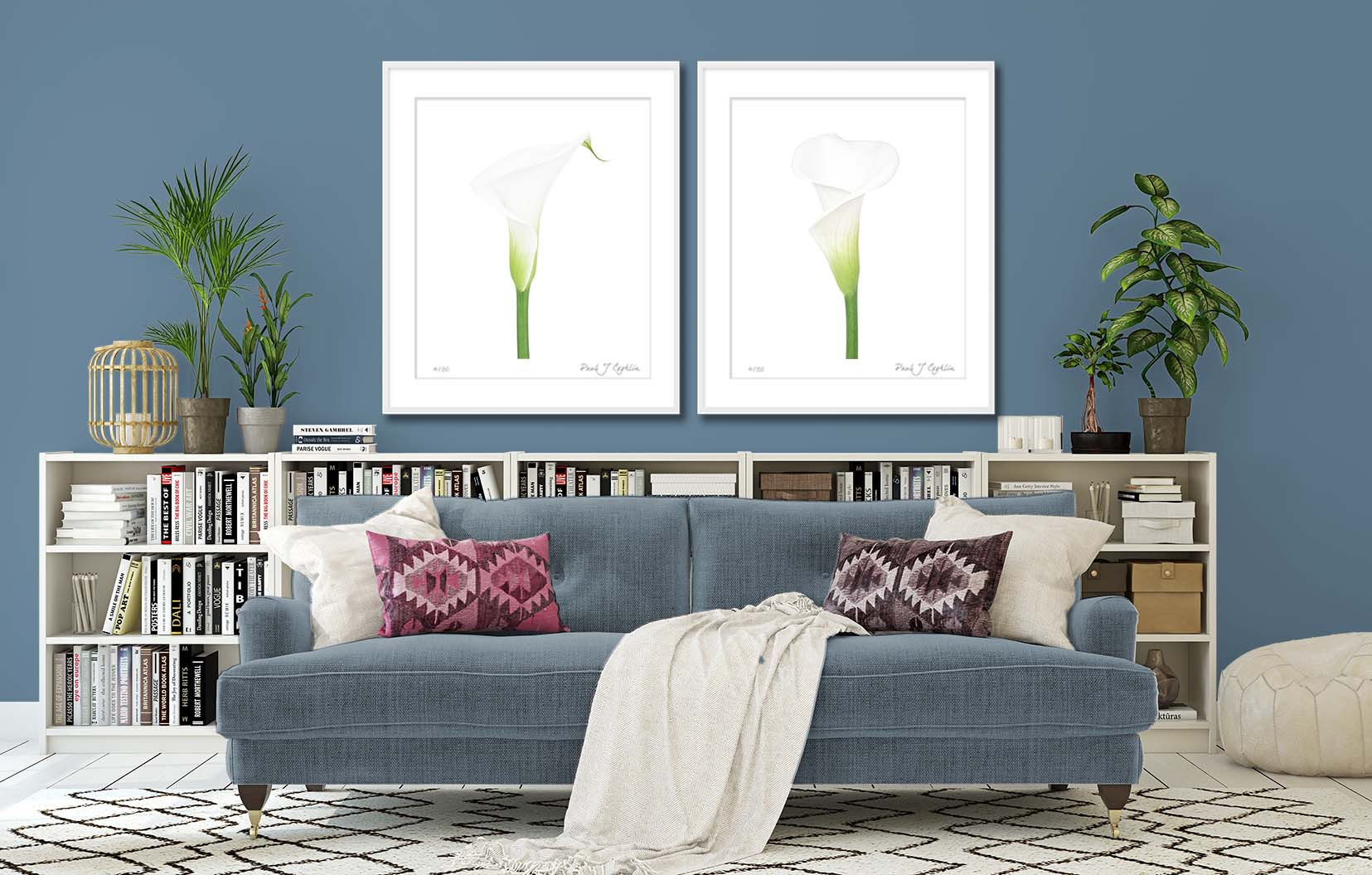 Arum Lily (Z. aethiopica) on White I + II. Two limited edition botanical studies of Arum Lilies by fine art photographer Paul Coghlin FBIPP.