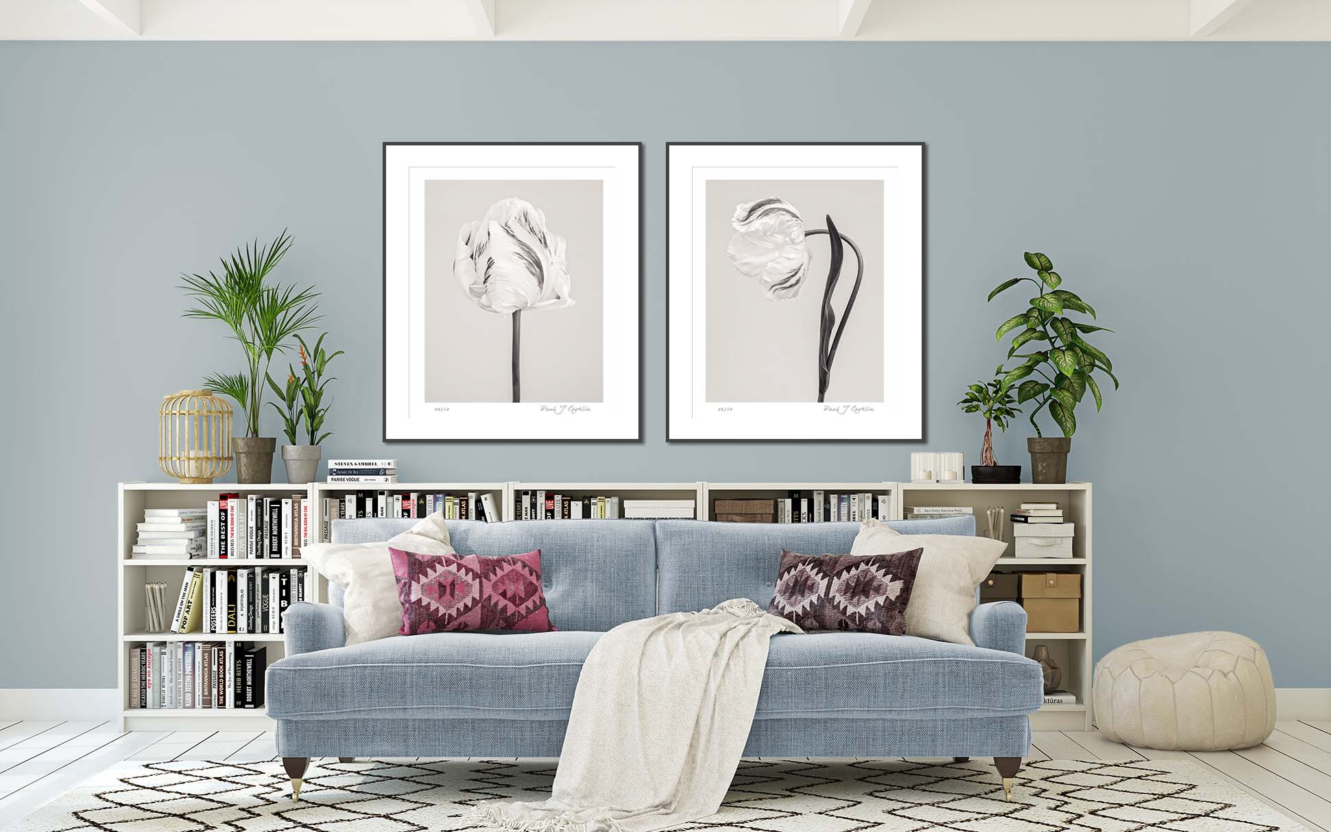 Tulip Madonna I & II. Limited edition photographic prints of tulips by fine art photographer Paul Coghlin. Image shows monochrome botanical studies of tulips.