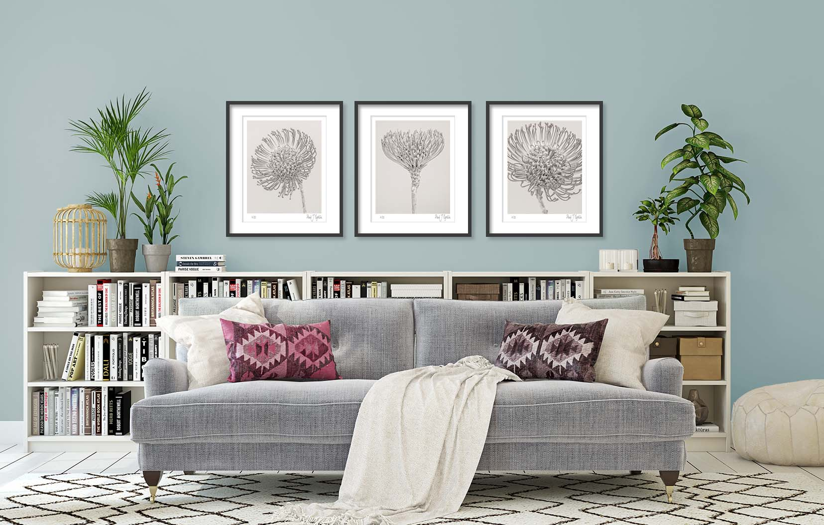 Leucospermum cordifolium (Protea) I, II + III. Three monochrome prints of a South African plant are limited edition prints by fine art photographer Paul Coghlin FBIPP. These prints are part of the wider 'Botanic' series of photographic floral studies.
