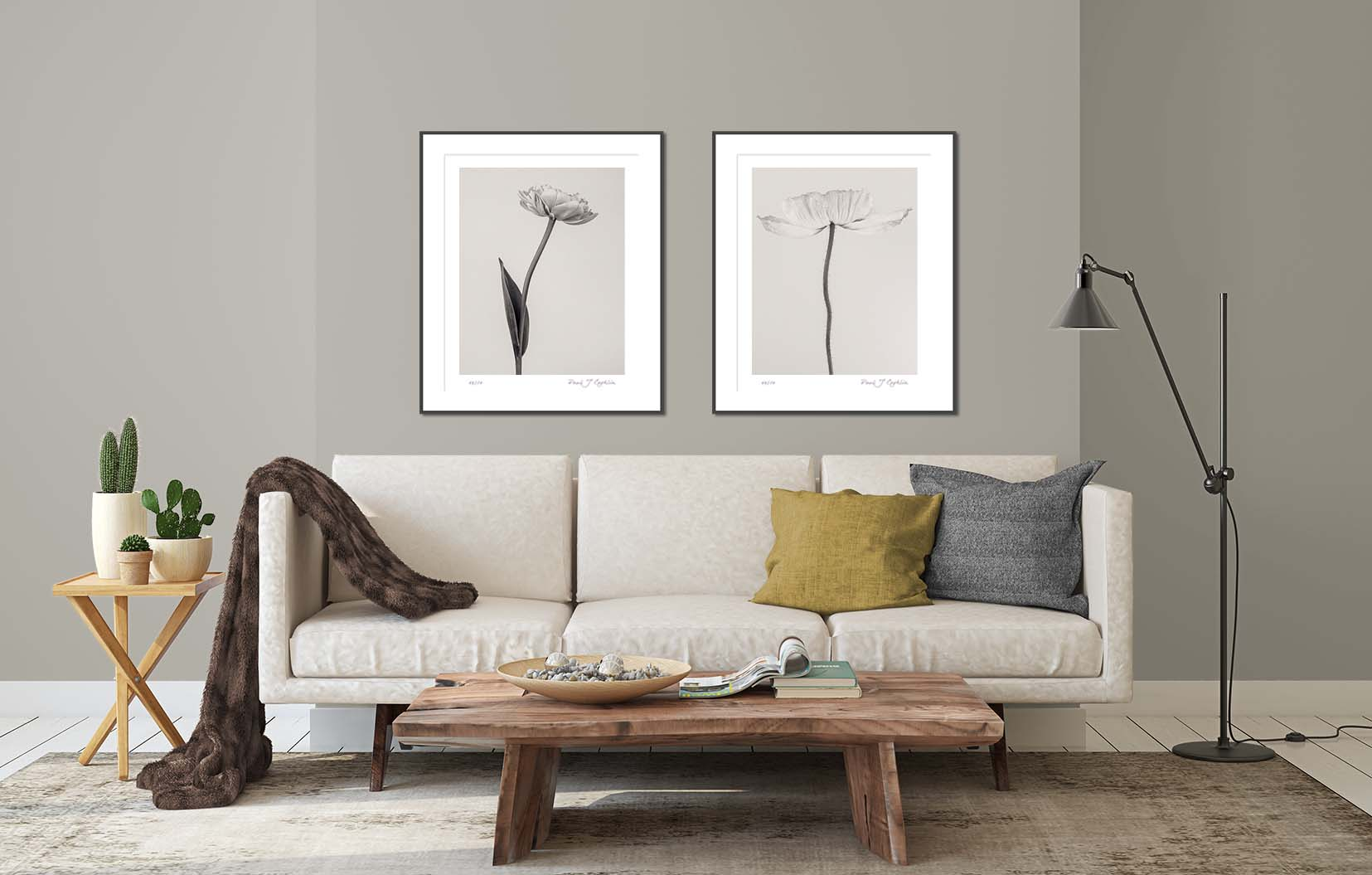 Papaver nudicaule (Icelandic Poppy) II & Tulipa 'Yellow Pompenette' II. Limited edition floral prints of a poppy and tulip by award-winning fine art photographer Paul Coghlin FBIPP.