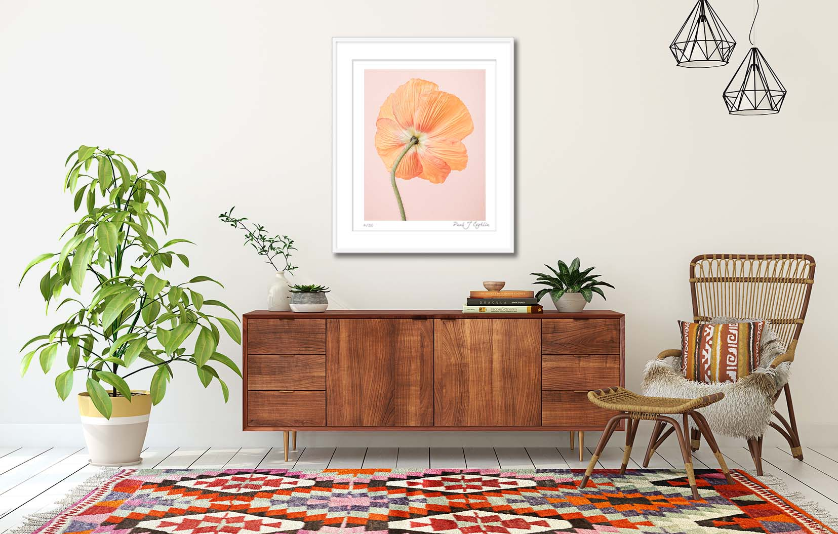 Orange Icelandic Poppy. Limited edition photographic print of an Icelandic Poppy by fine art photographer Paul Coghlin. Orange poppy in a frame on the wall.
