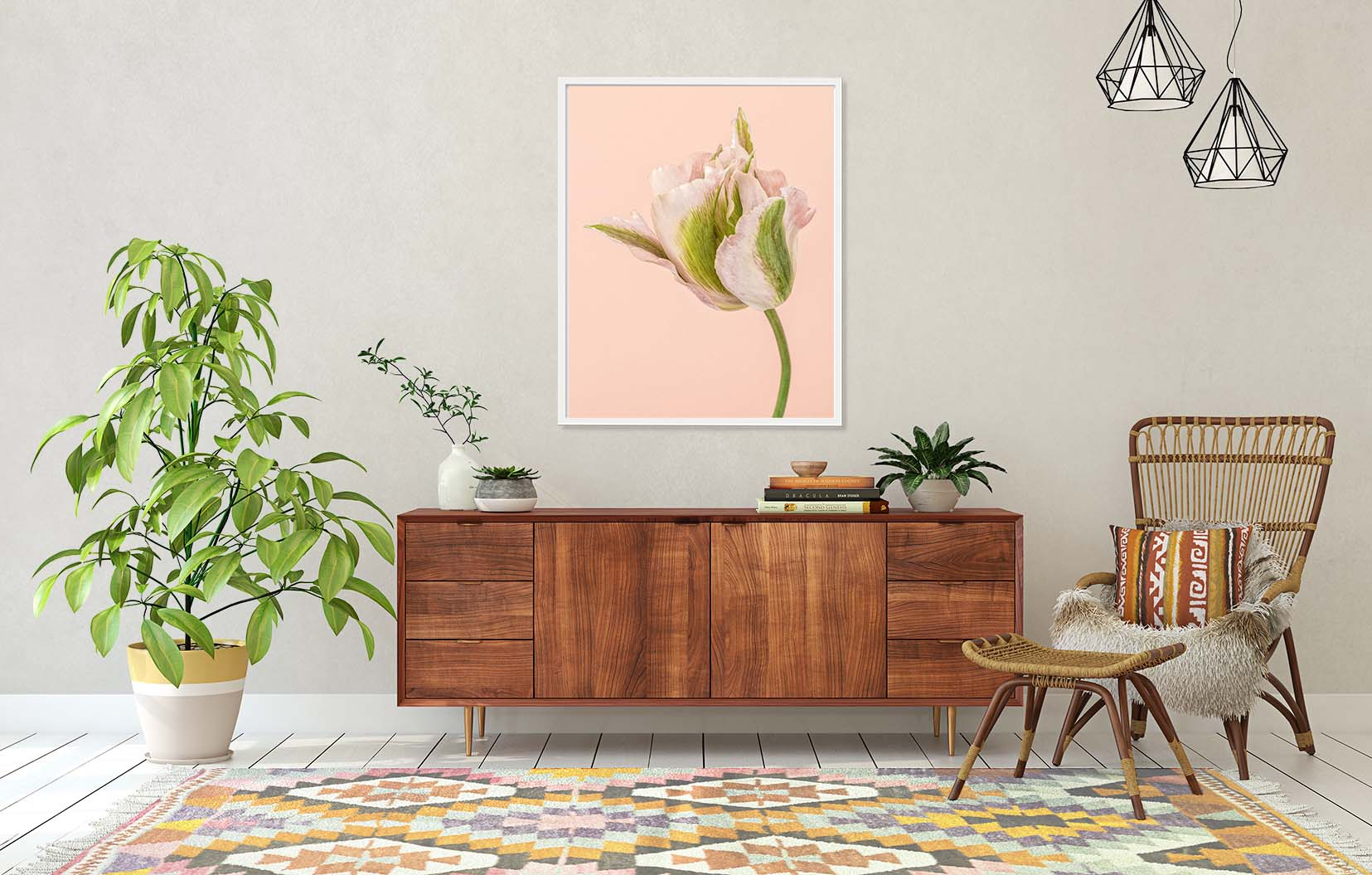 Framed limited edition photographic print of a pink and green tulip on the wall. Fine art floral prints by award-winning photographer Paul Coghlin FBIPP.