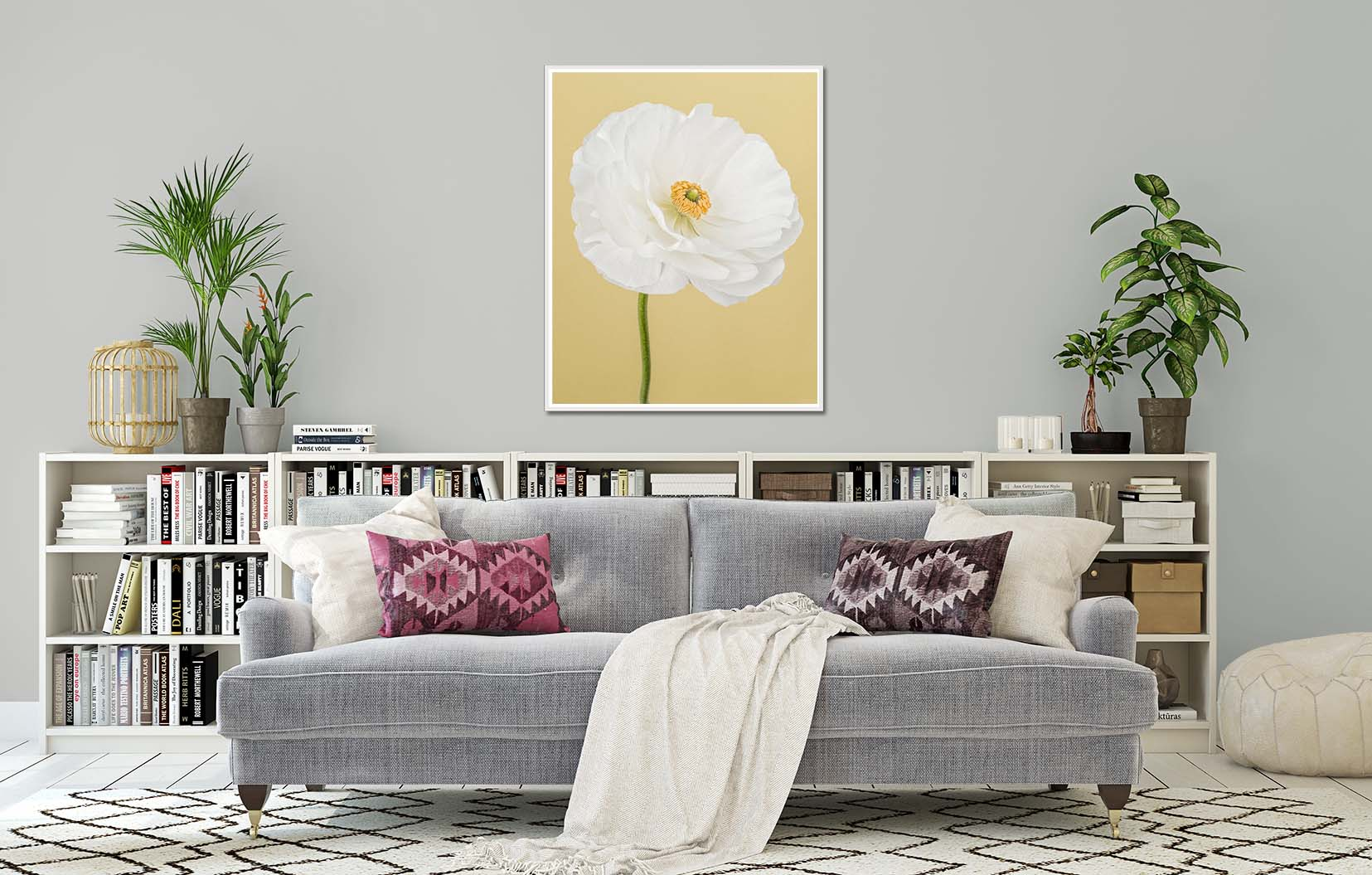 White Ranunculus I. Limited edition fine art print of a white ranunculus on a yellow background. Botanical prints and floral studies by fine art photographer Paul Coghlin.