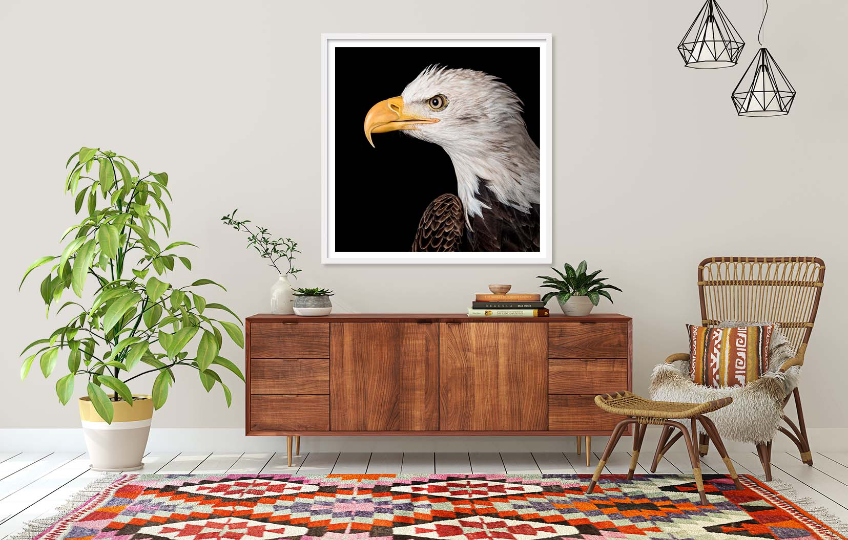 Colour photograph of a bald eagle, framed and on the wall. Limited edition prints of birds by fine art photographer Paul Coghlin FBIPP.
