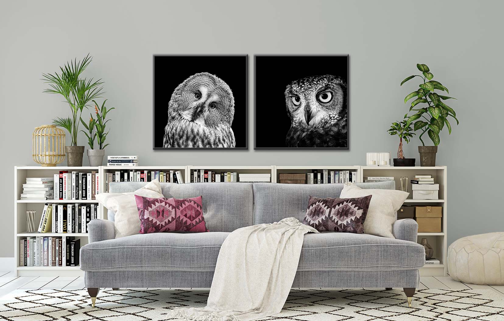 Black and white photographs of two owls, framed and on the wall. Limited edition prints of birds by fine art photographer Paul Coghlin FBIPP.