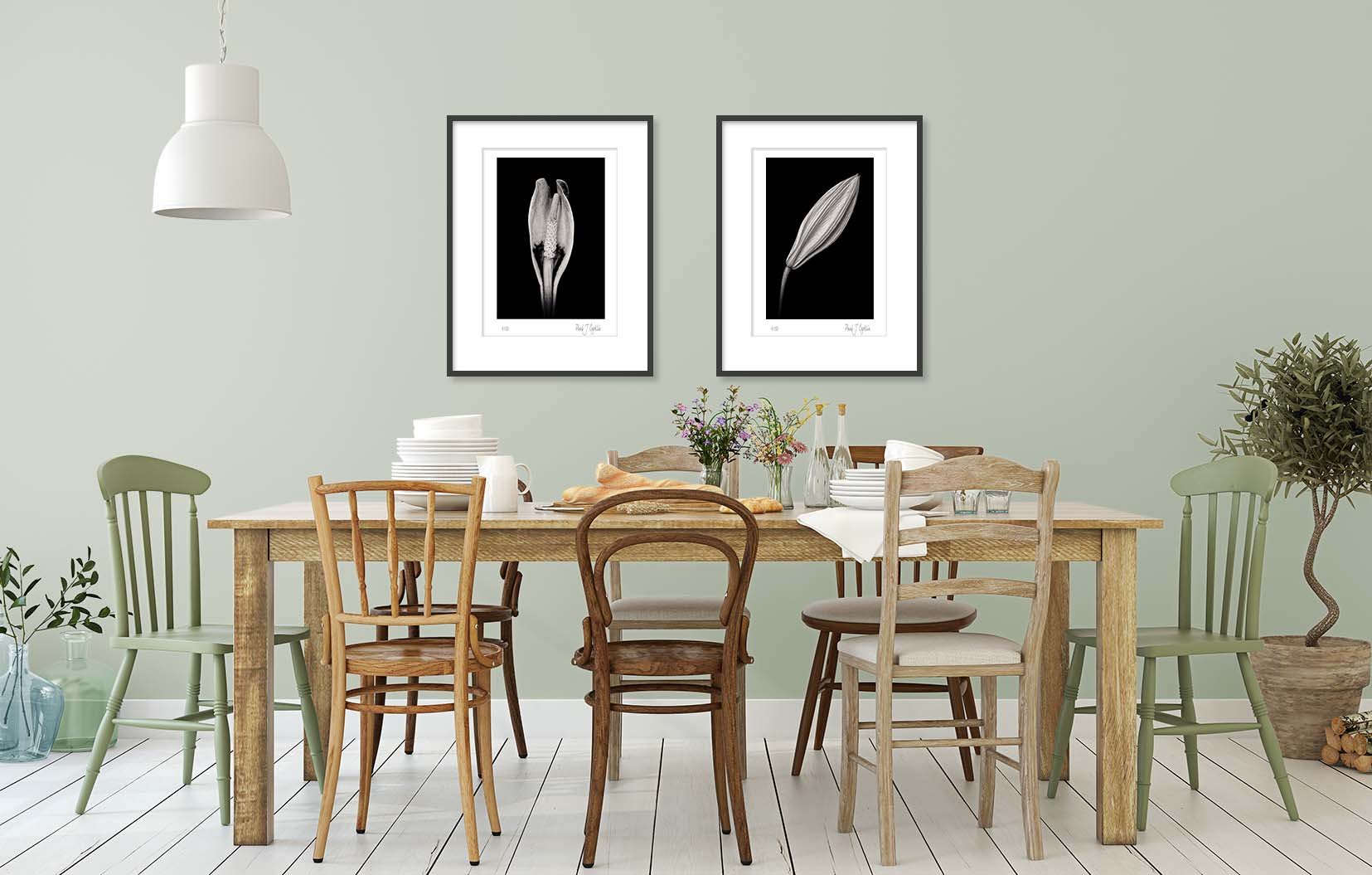 Fine art black and white photographs of a calla lily. Limited edition photographic prints shown framed and on the wall.