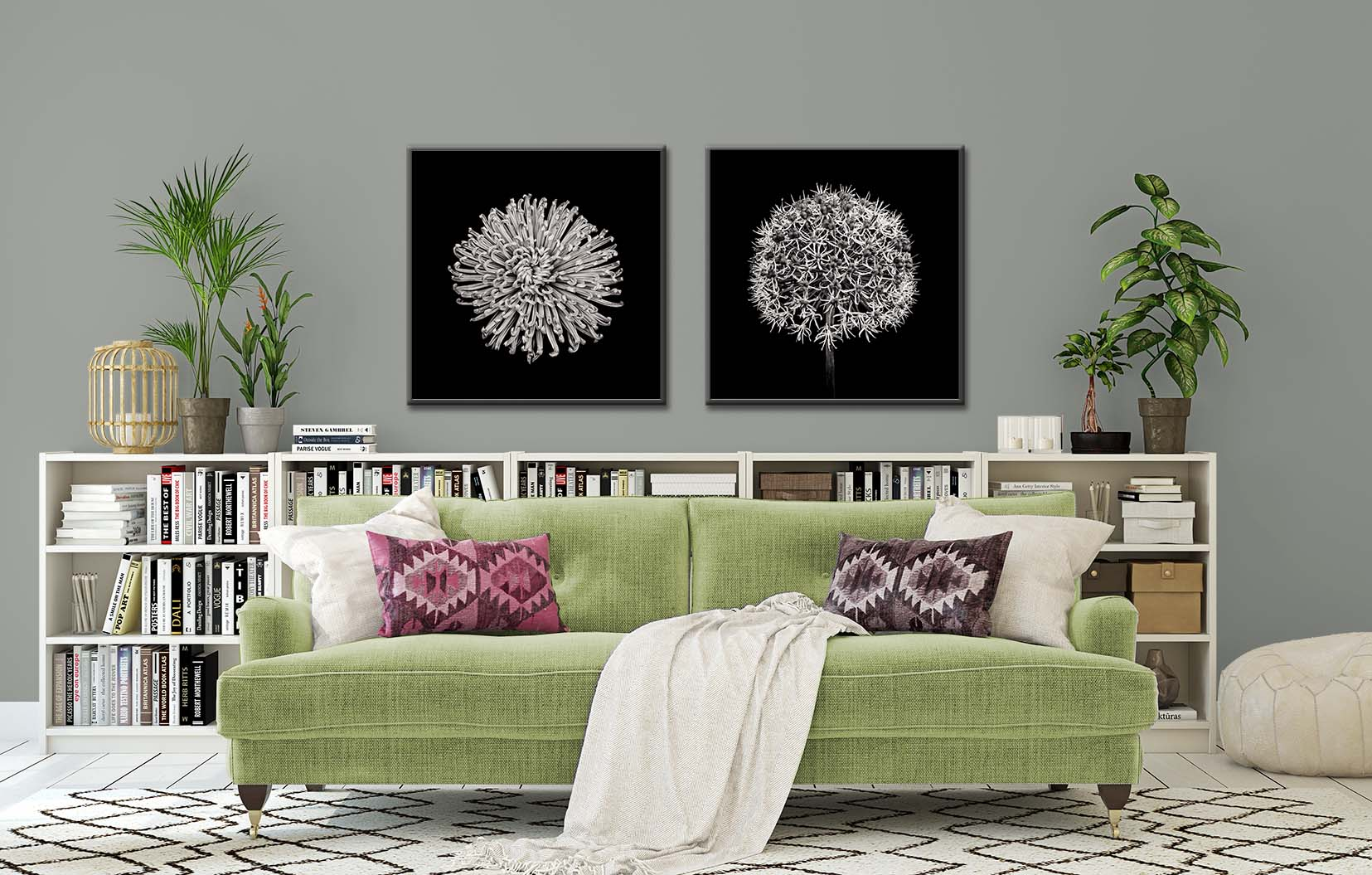 Two black and white floral prints of a crysanthamum and a white empress. Fine art botanic prints by Paul Coghlin FBIPP.
