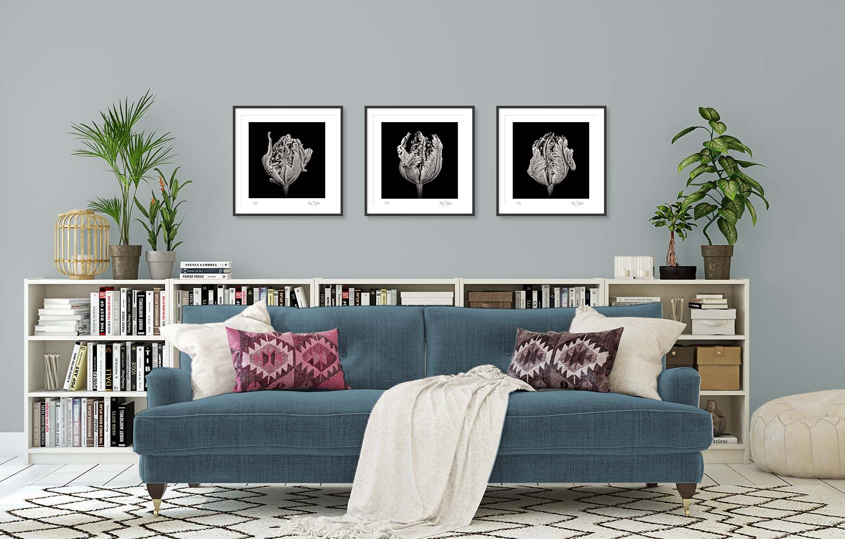 Three black and white floral prints of a black parrot tulip by fine art photographer Paul Coghlin FBIPP