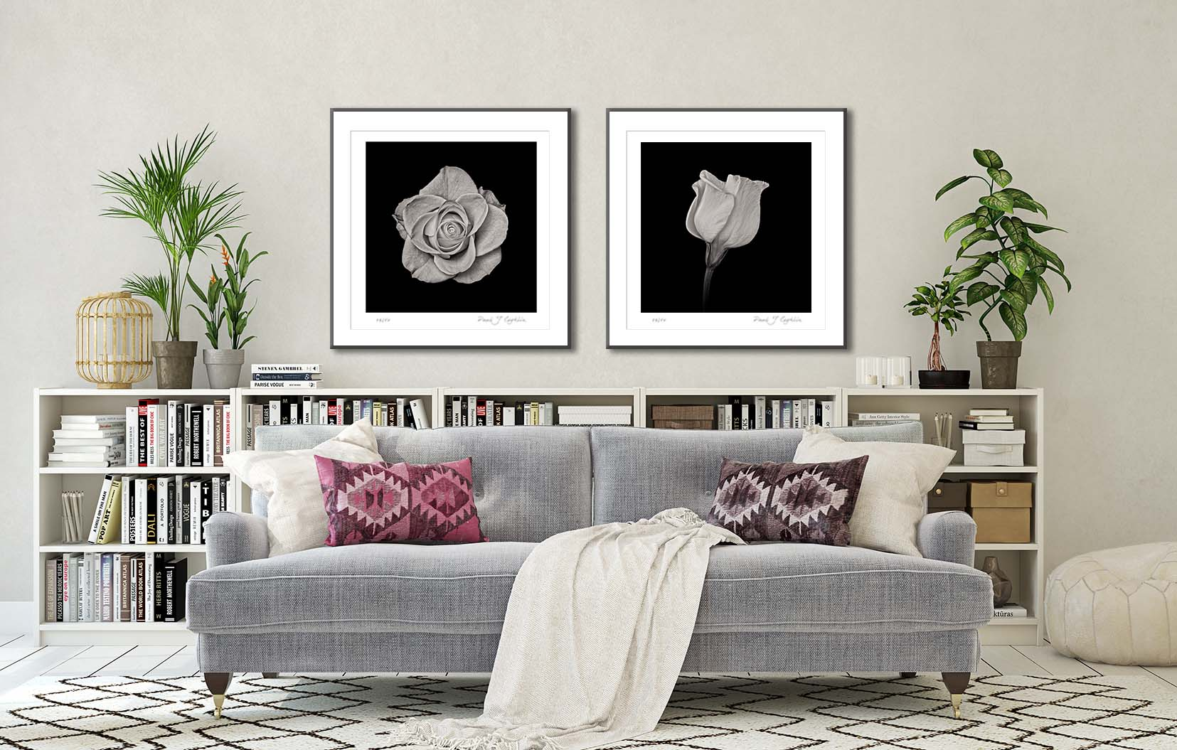 Two black and white floral prints of a rose and a campanula, framed and on the wall. Fine art floral photography by Paul Coghlin FBIPP.