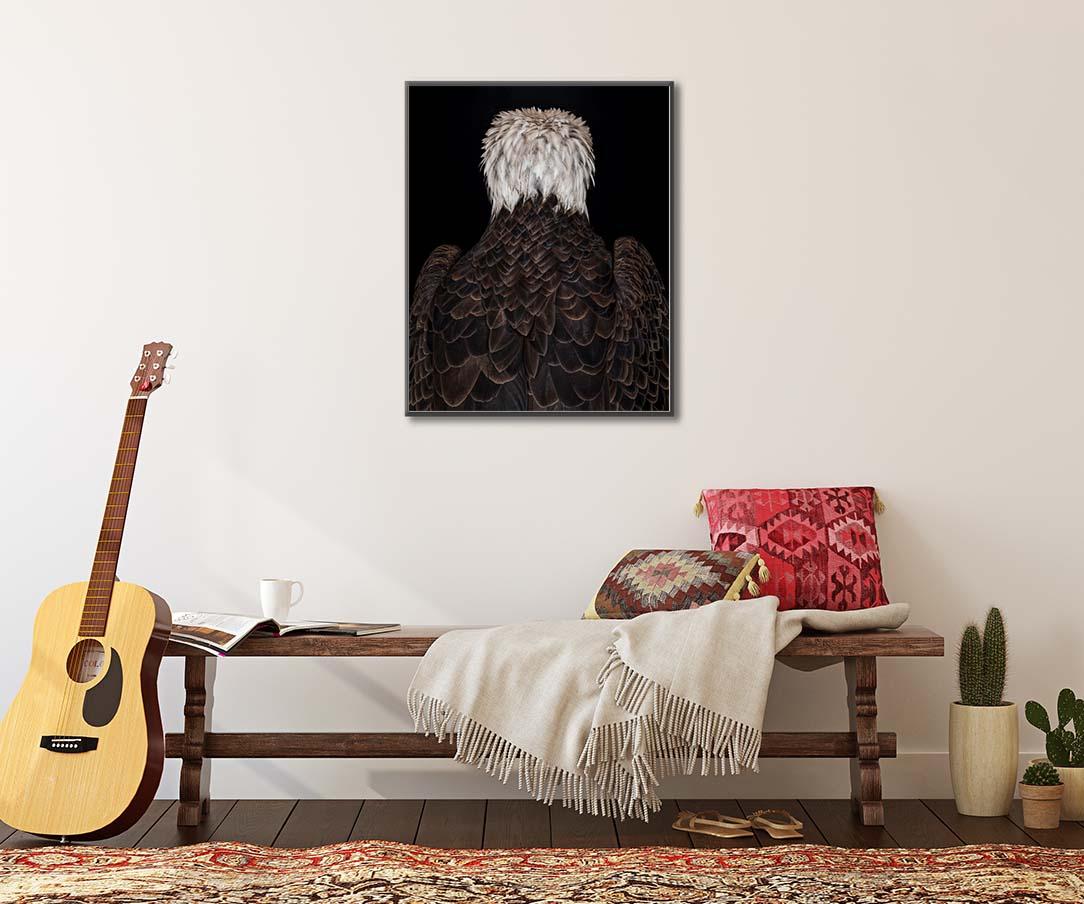 Limited edition print of a bald eagle by Paul Coghlin FBIPP.