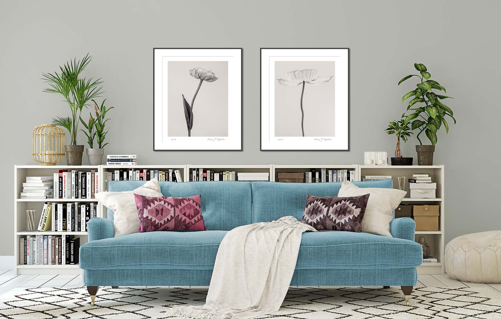 Limited edition fine art monochrome floral studies by award-winning photographer Paul Coghlin.