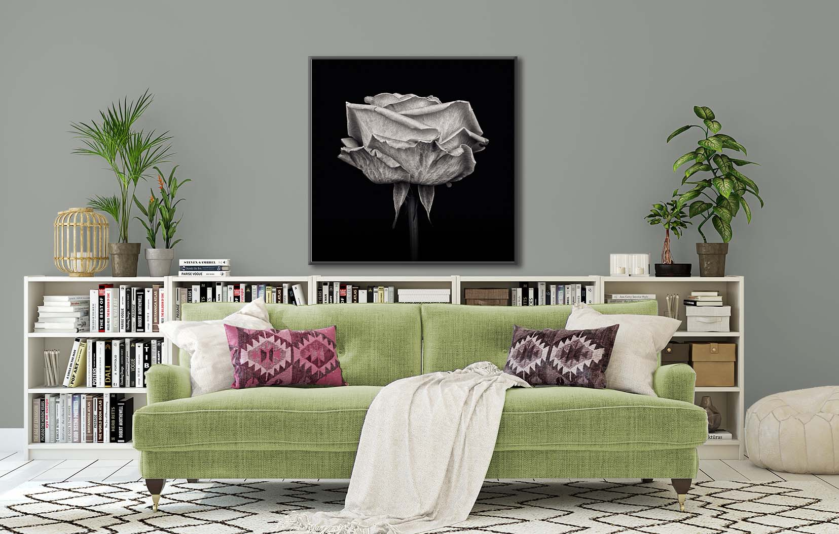 Black and white print of an English rose, framed and on the wall. Fine art floral photograph by Paul Coghlin FBIPP