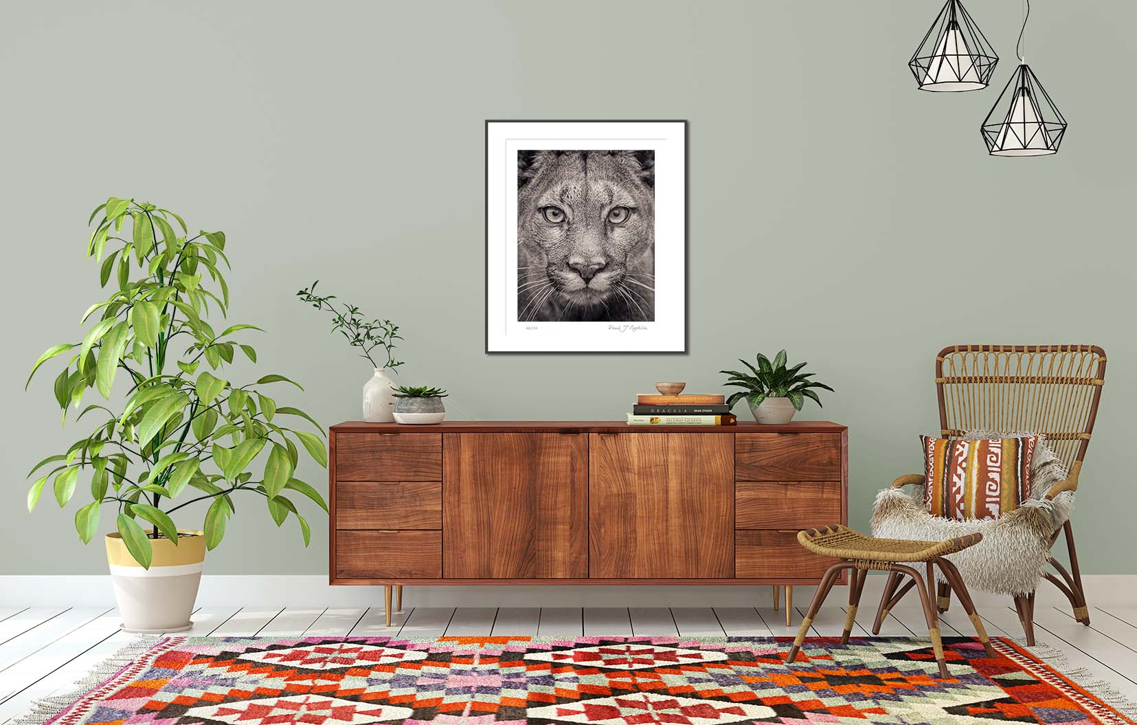 Portrait of a Puma from the series Fading From View. Big cat and animal prints by fine art photographer Paul Coghlin. Limited edition photographic prints.