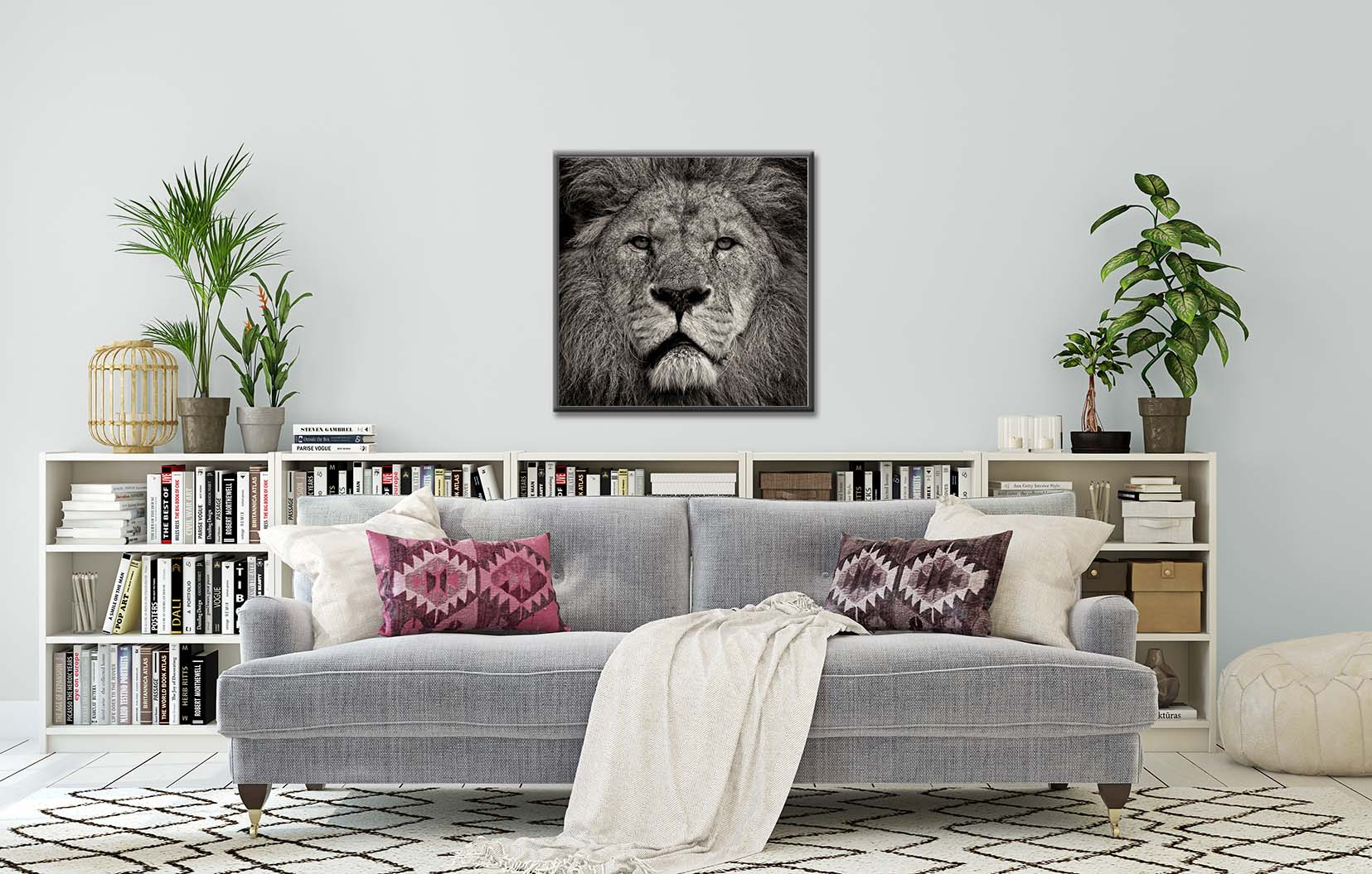 Lion's Stare - portrait of a lion looking into the camera. Limited edition photographic prints by fine art photographer Paul Coghlin.