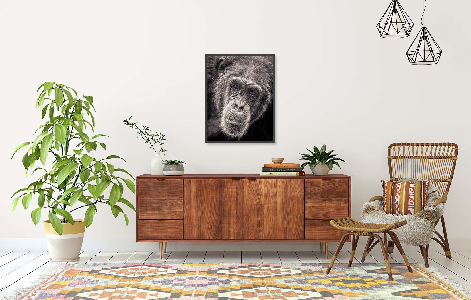Wondering. Portrait of a chimp by fine art photographer Paul Coghlin. Limited edition black and white print of a chimp and other animals.