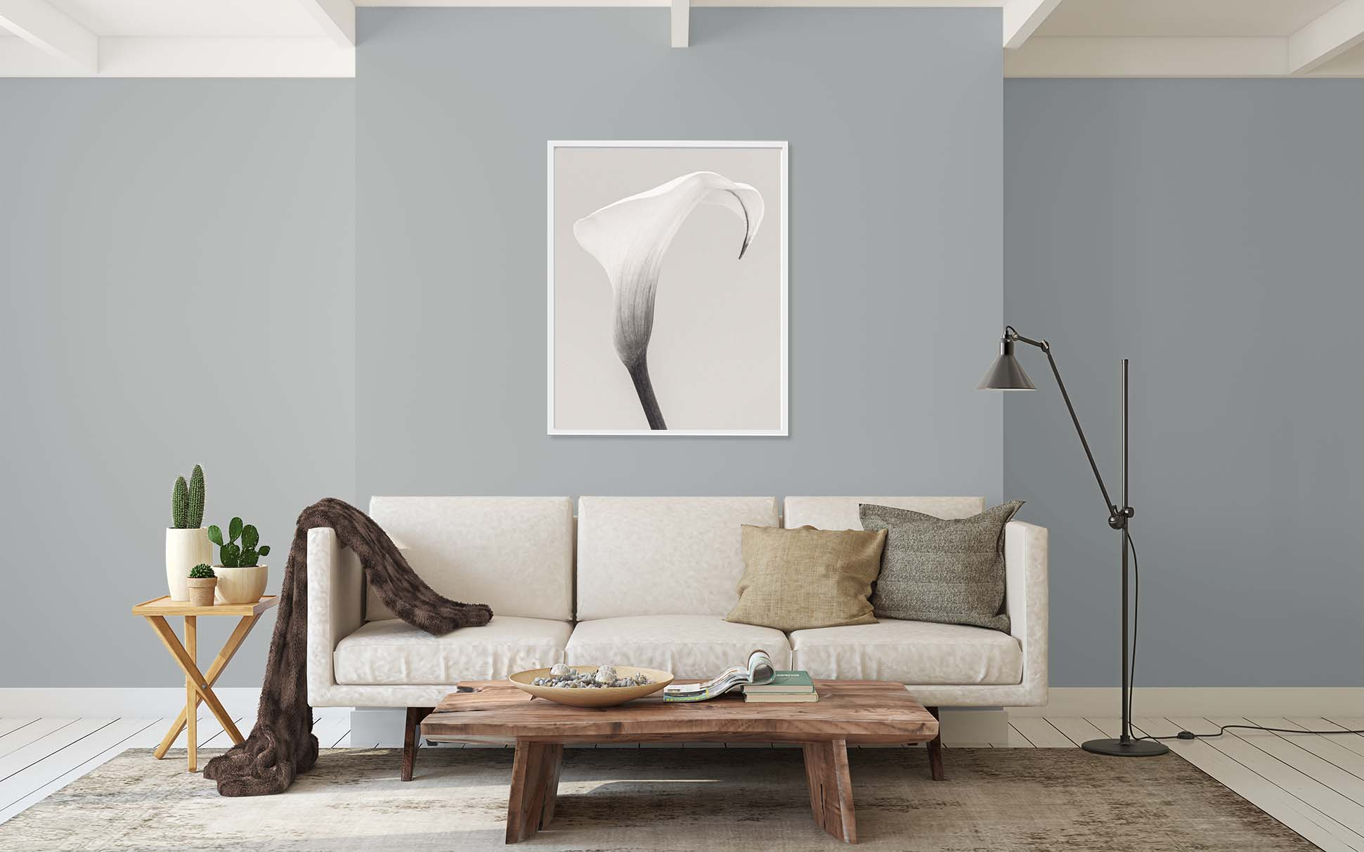 Zantedeschia (Arum Lily) I. Limited edition monochrome print of an Arum Lily by fine art photographer Paul Coghlin. These prints are part of a series of floral prints called 'Botanic'