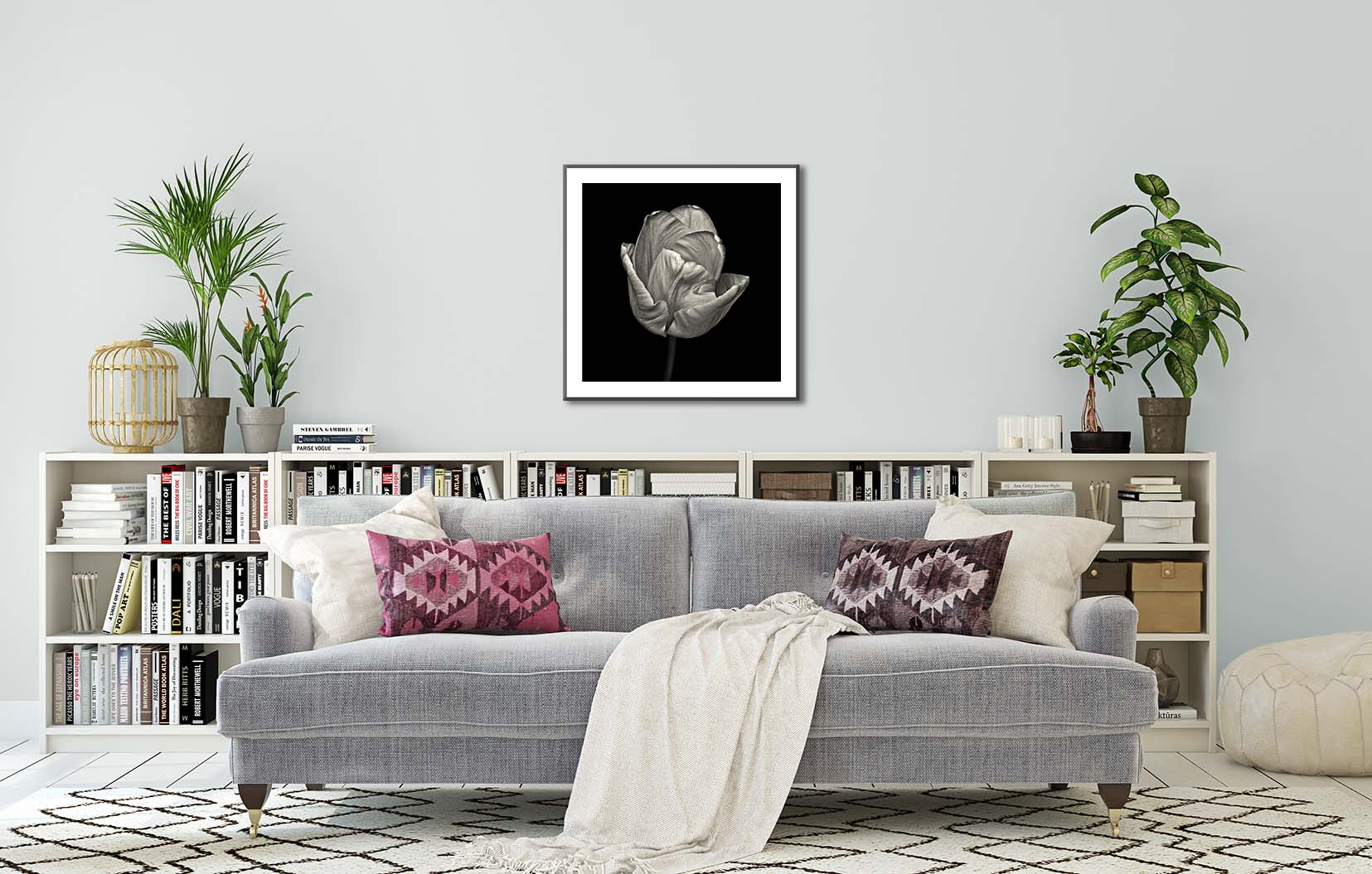 Black and white photograph of a tulip on a black background, framed and hanging on the wall. Limited edition, fine art floral study of a tulip by award-winning photographer Paul Coghlin FBIPP.