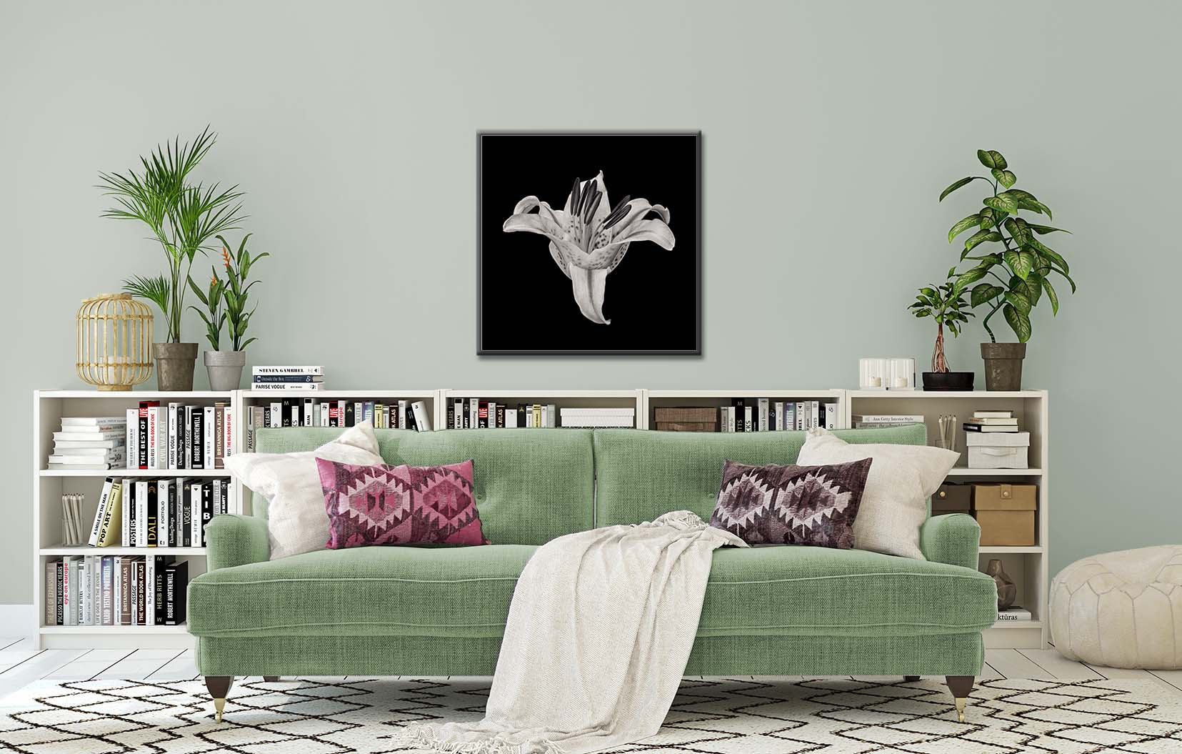 A black and white limited edition print of a stargazer lily by fine art photographer Paul Coghlin