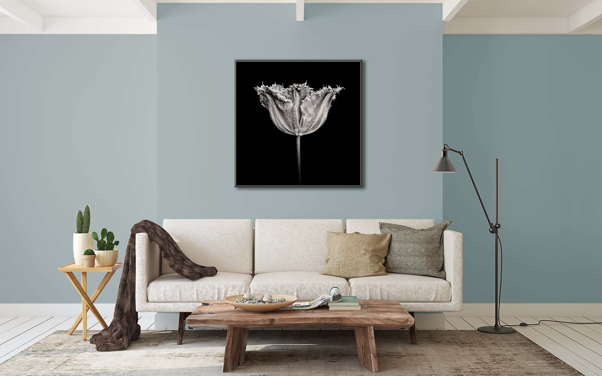 """A black and white limited edition print of a tulip """"fancy frills"""" by fine art photographer Paul Coghlin"""