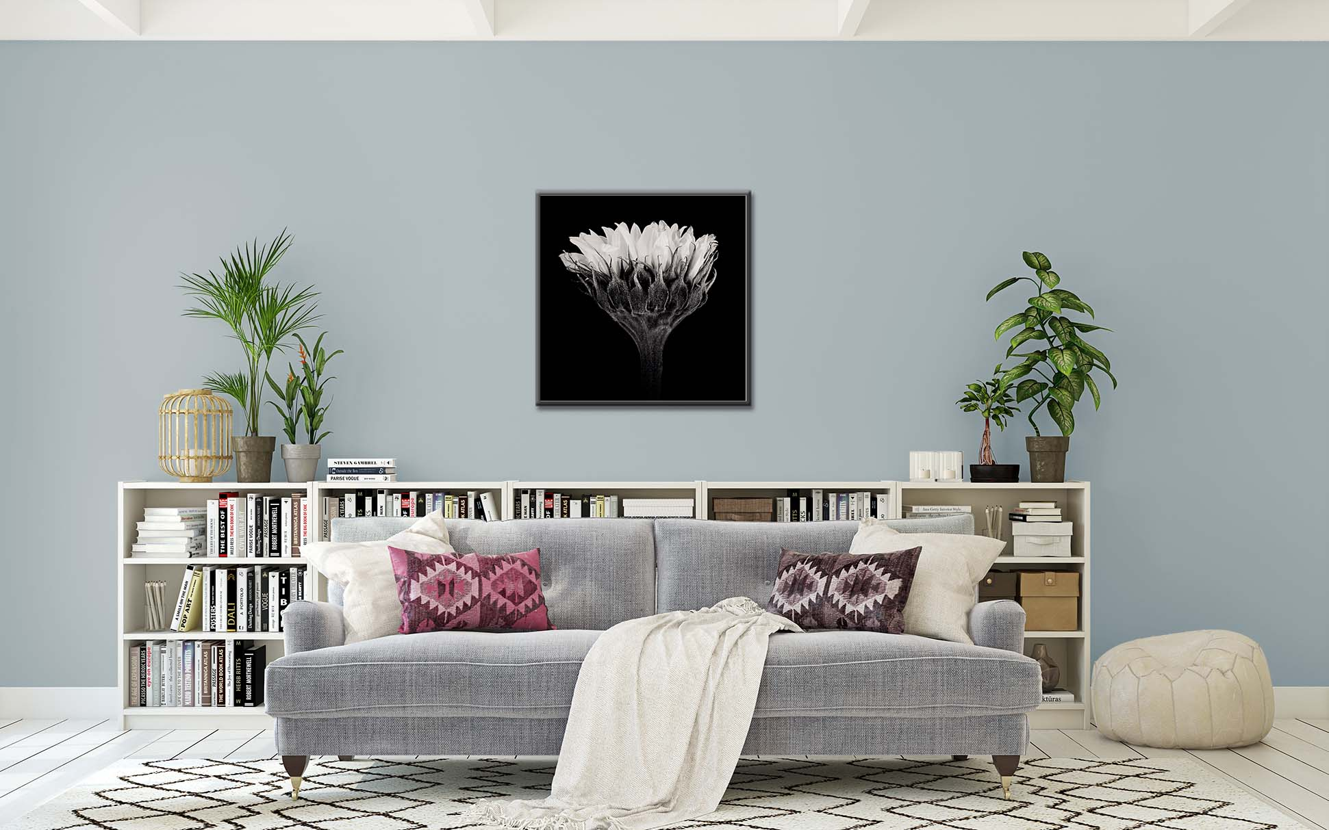 Black and white limited edition print of a Sunflower shown framed and on the wall. Fine art prints by photographer Paul Coghlin.