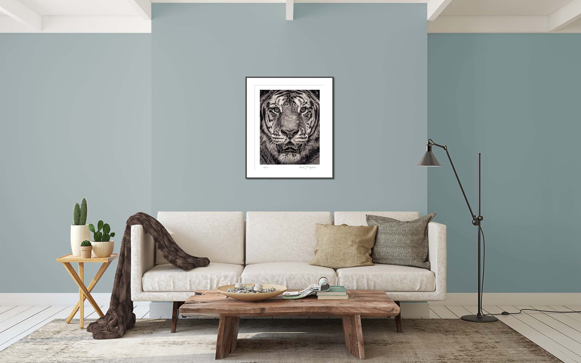 Portrait of a Sumatran Tiger from the Fading From View. Big cat and animal prints by fine art photographer Paul Coghlin. Limited edition photographic prints.
