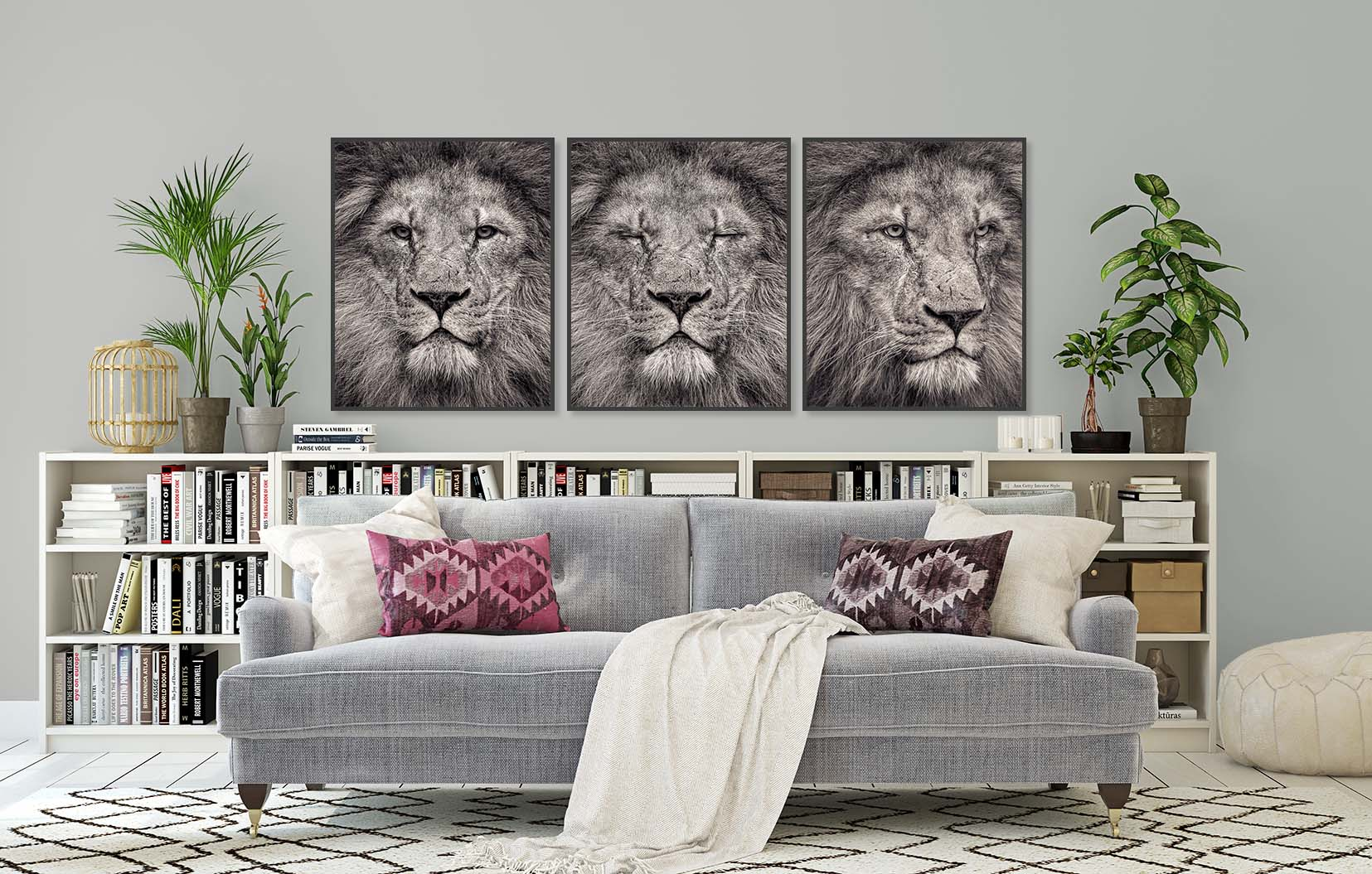 Three black and white portraits of a lion. Limited edition fine art prints by award-winning photographer Paul Coghlin.