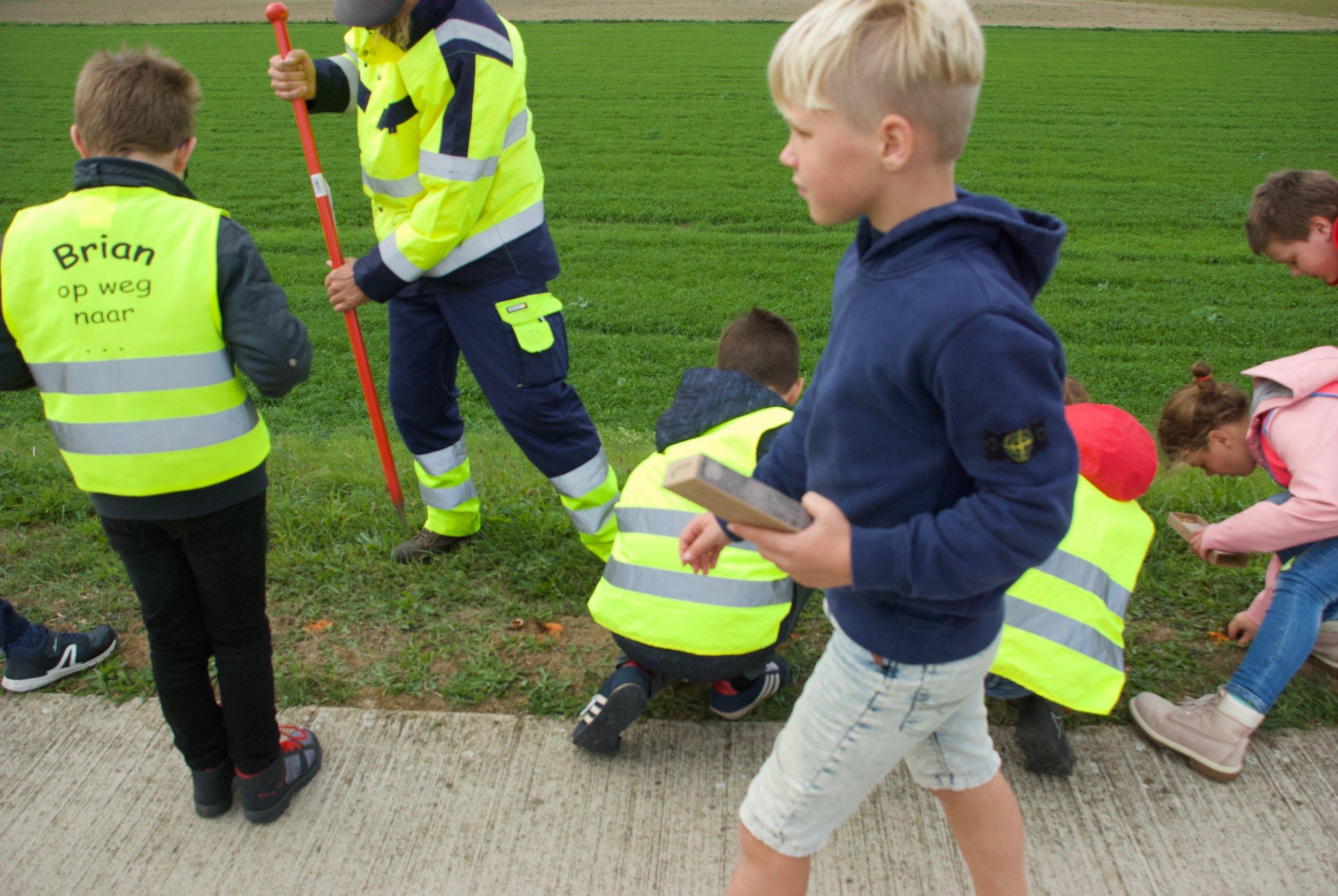 kinderen planten krokussen op de Maasdijk bij Maasmechelen