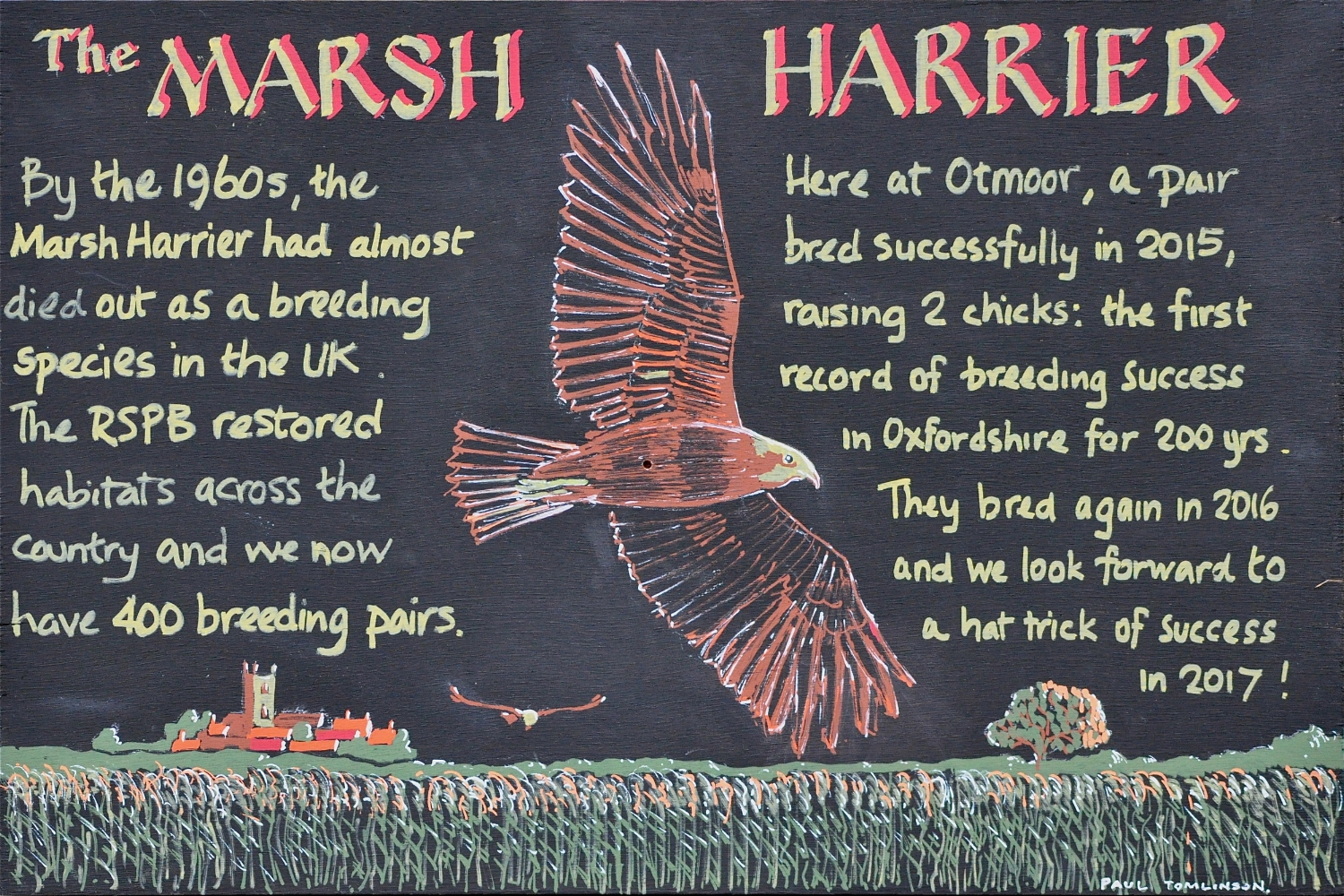 Marsh Harrier - RSPB sign board