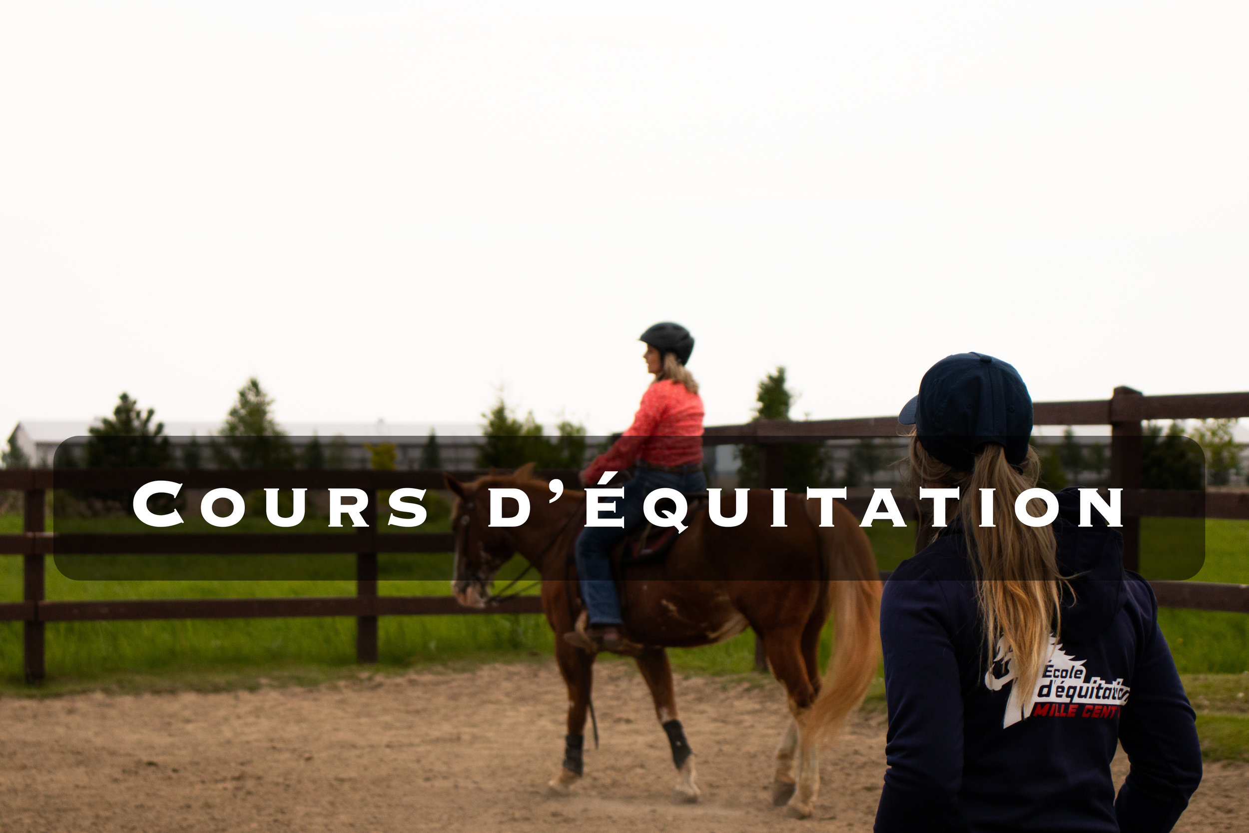 Cours d'équitation.jpg