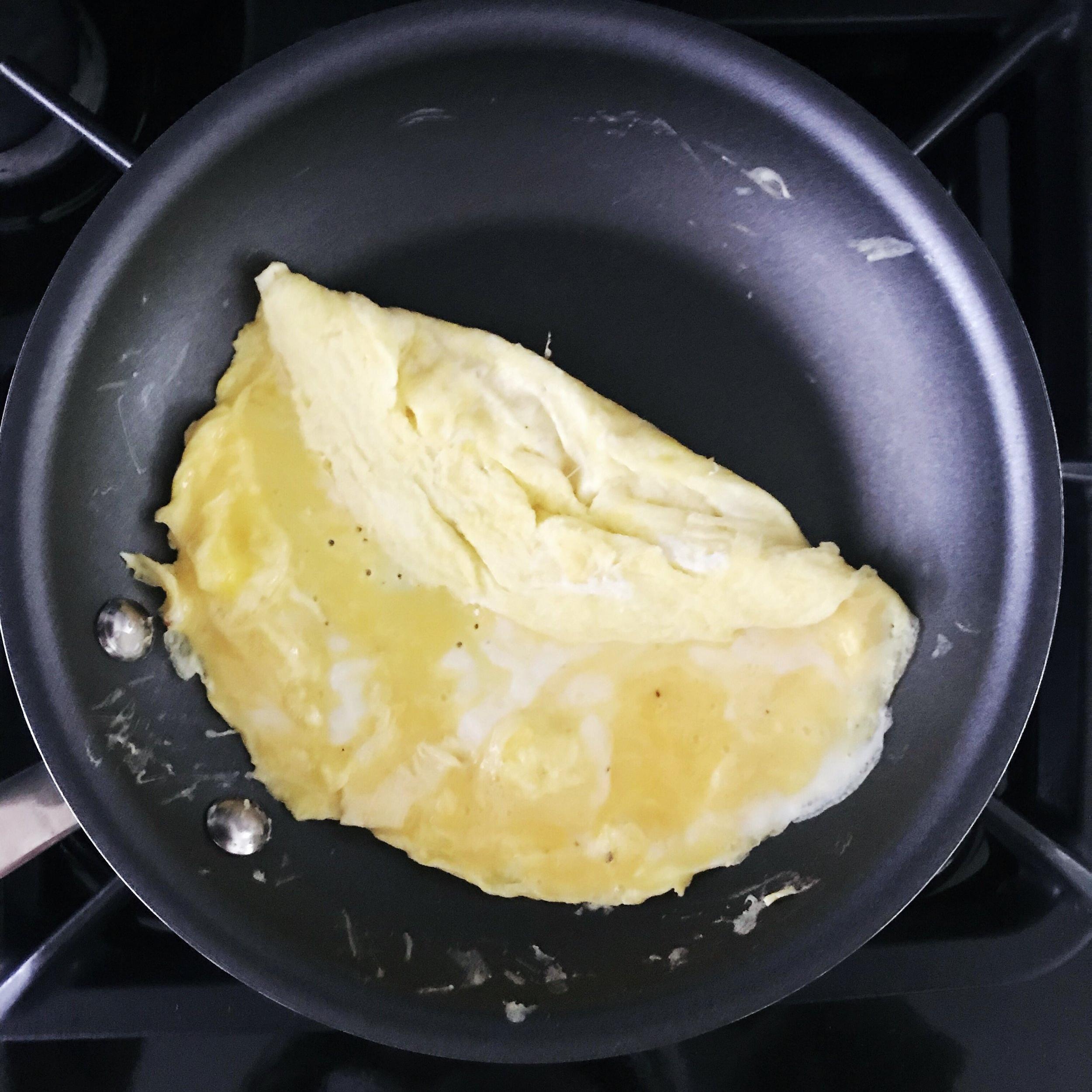 Fold Egg_1.JPG