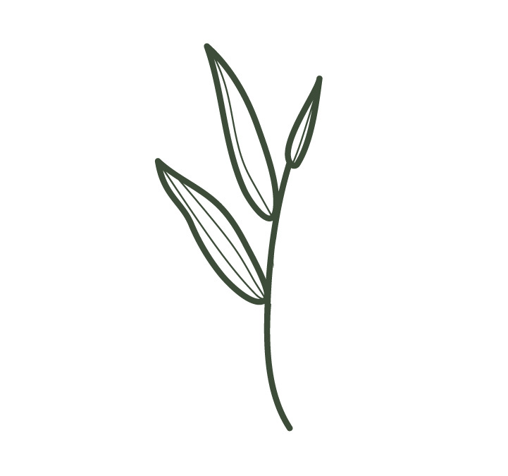 Nakina-Flower-Green.png