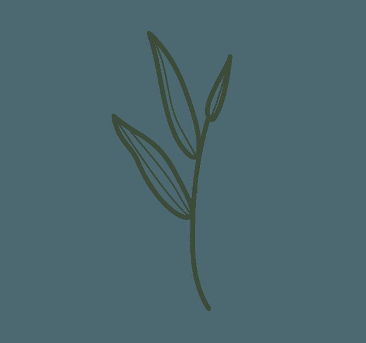 Nakina-Flower-Green.png