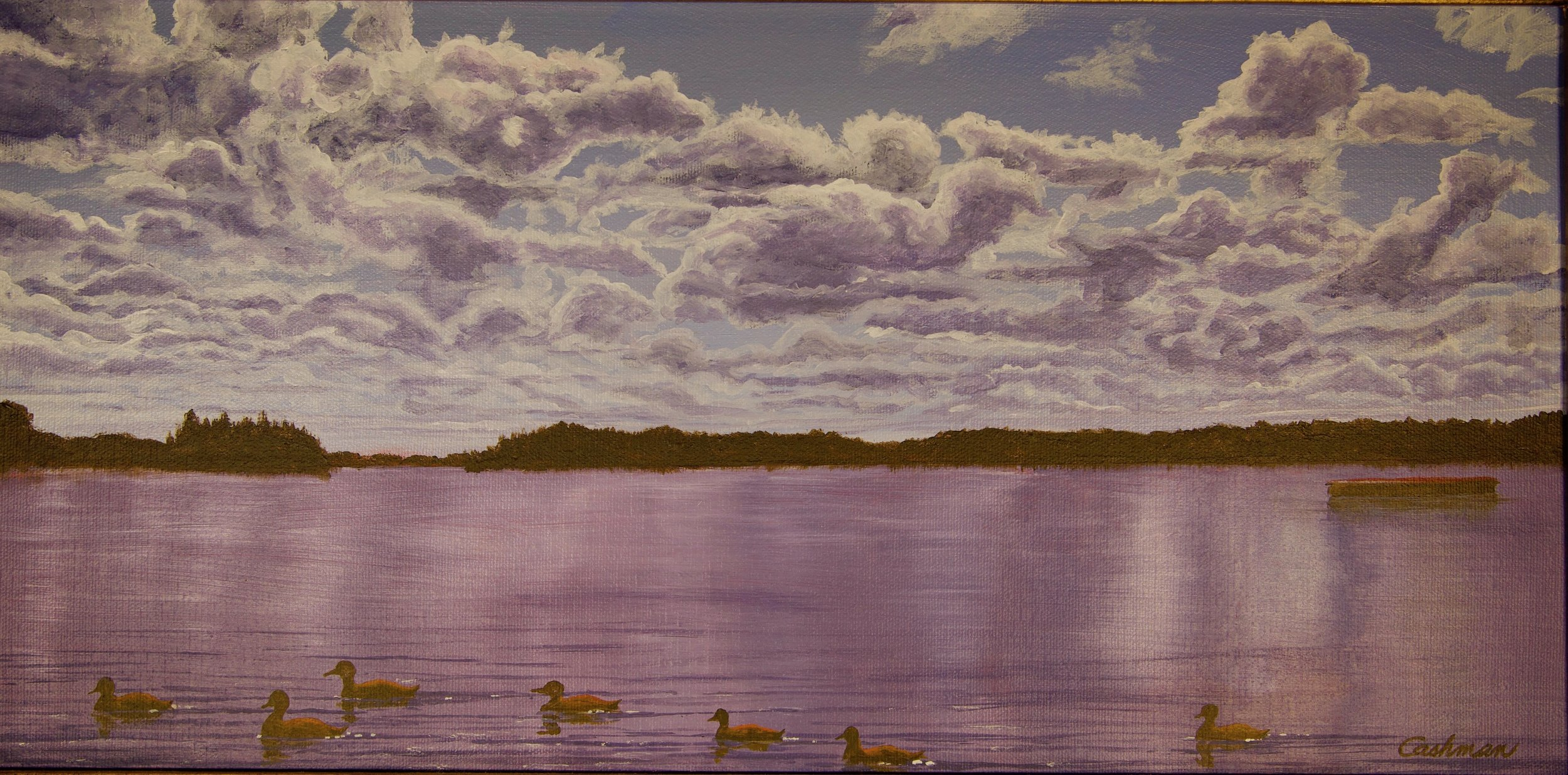Ducks in the Flowage