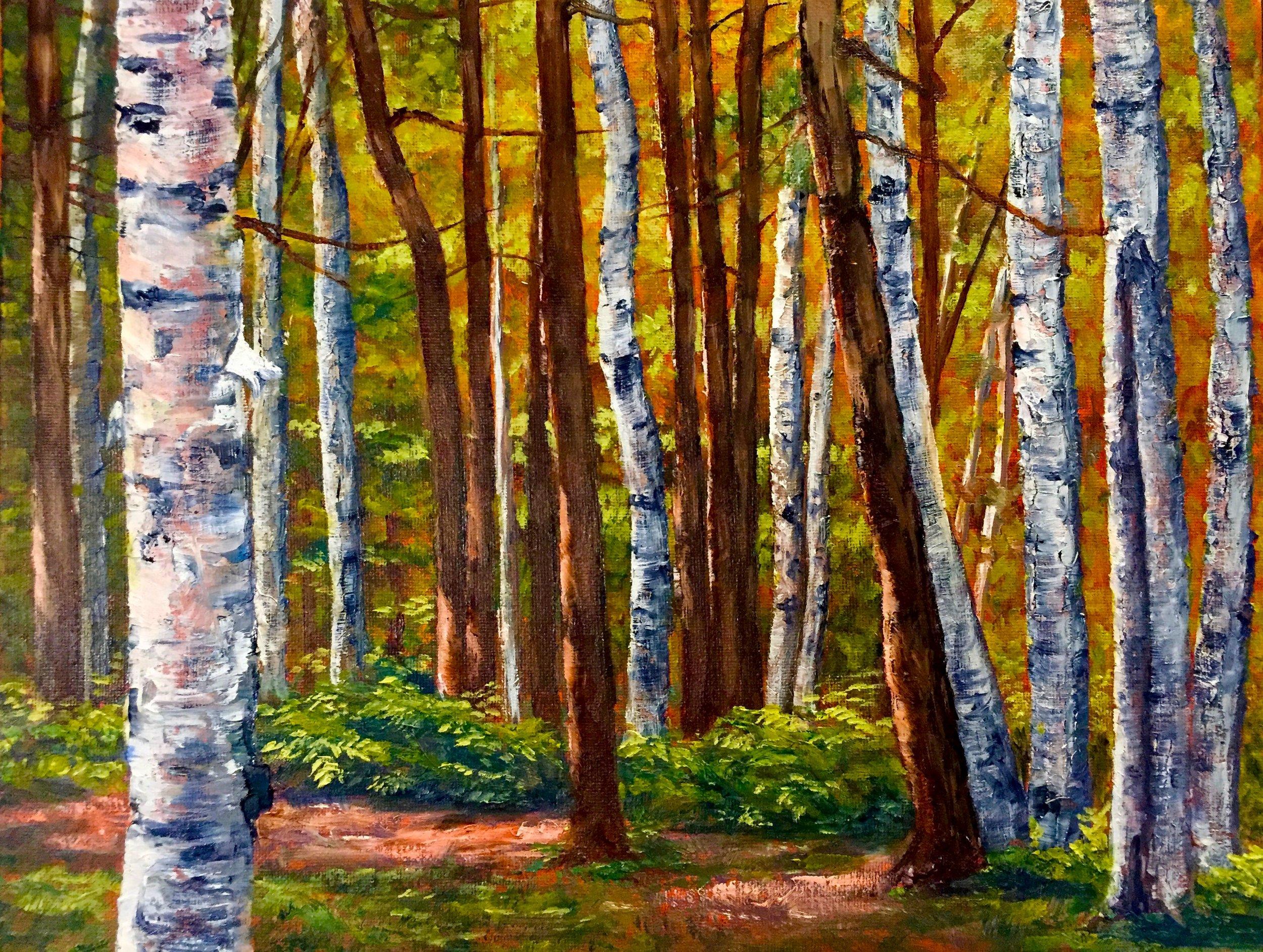 McFarland's Woods