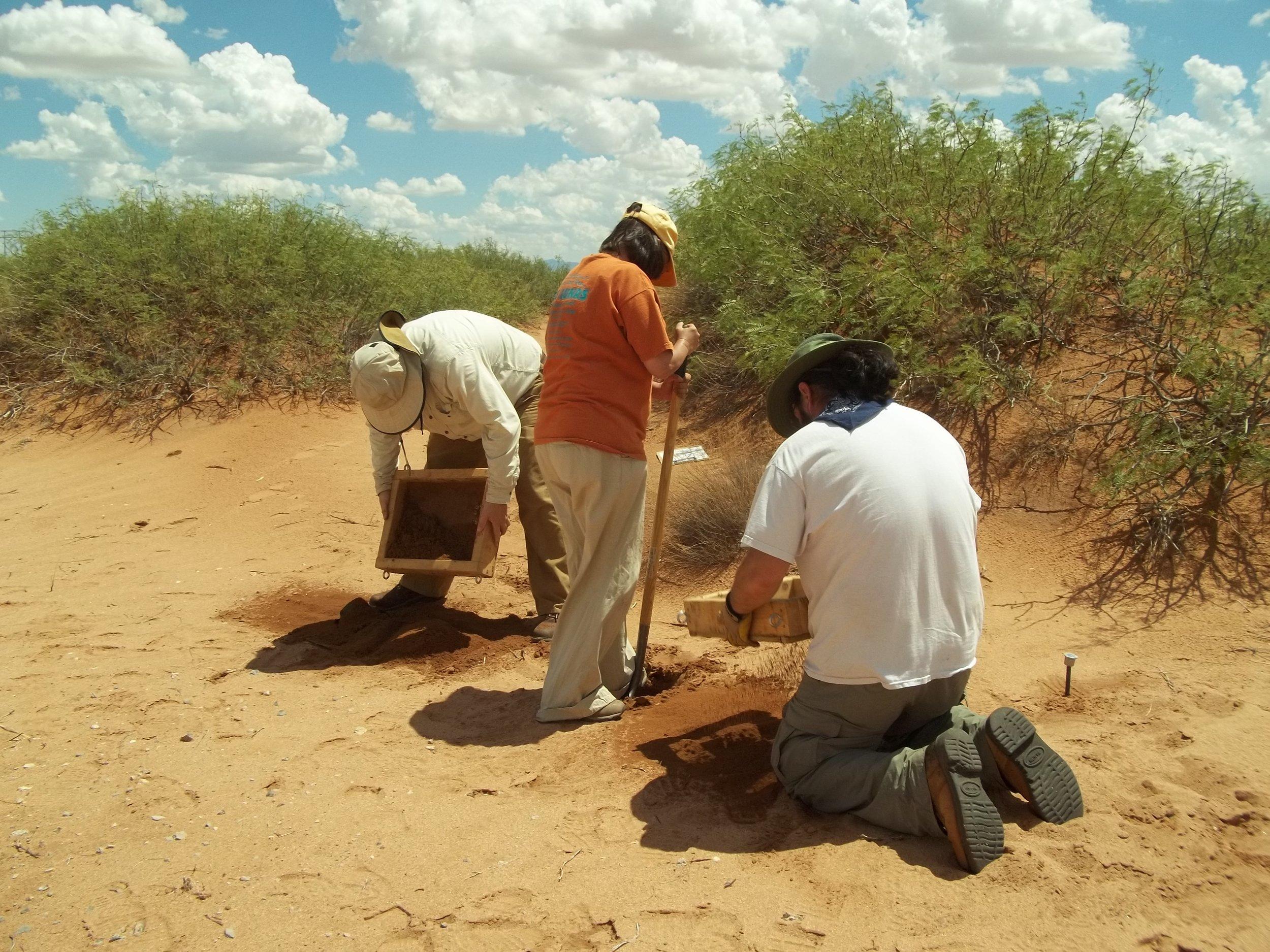 Site Excavation.
