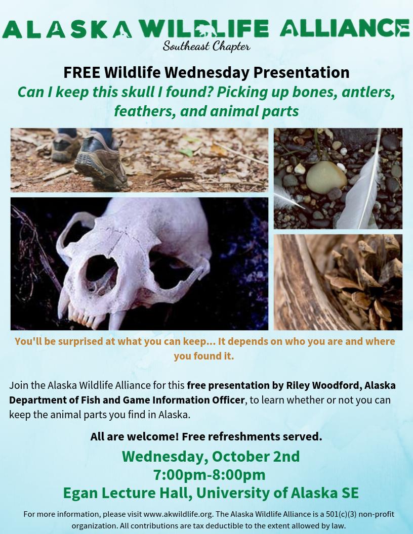 juneau wildlife wednesday october 2