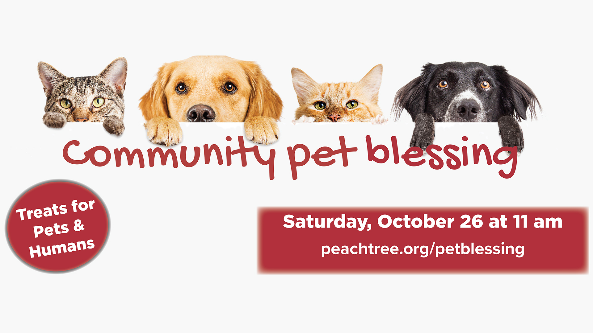 Join us as we bless your pets both big and small! St. Francis of Assisi, the patron saint of animals and ecology, had a deep and profound love for all of God's creation. In this same spirit we will celebrate the connection and love we share with our pets during our annual Pet Blessing.