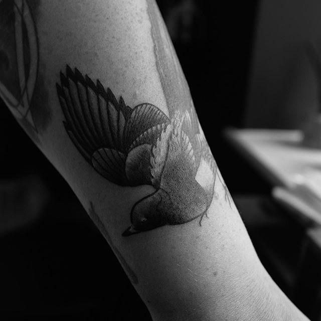 Magpie Tattoo.jpg