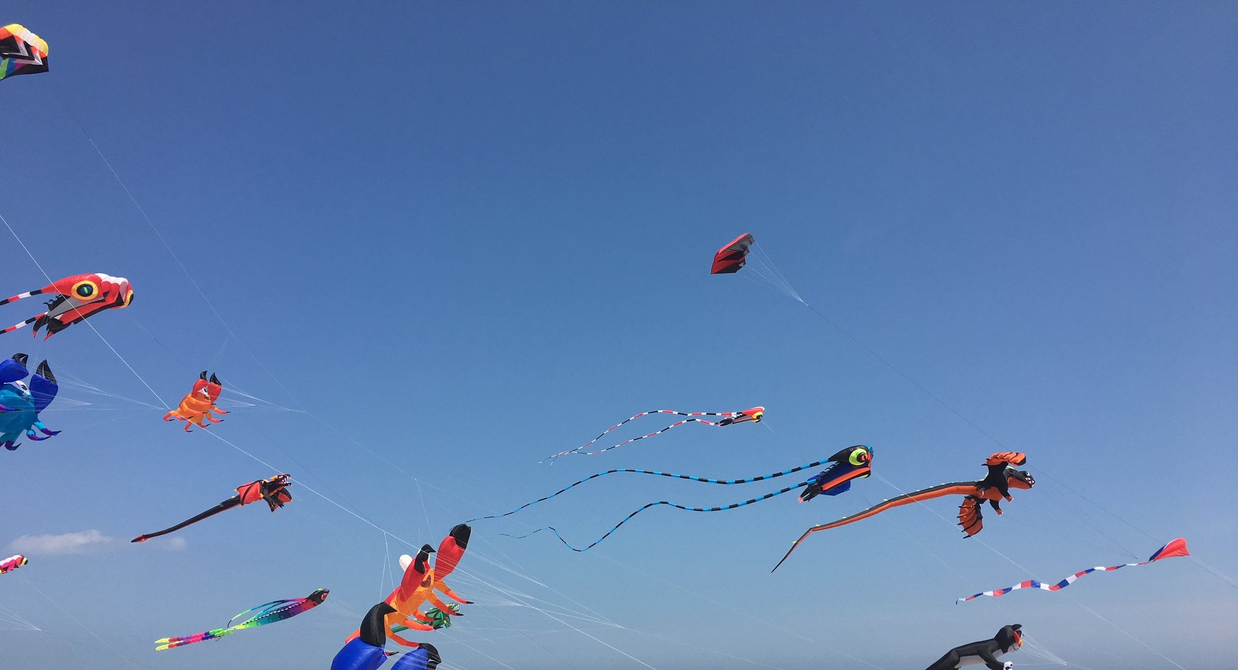 Copy of Kites Running Tours Philadelphia