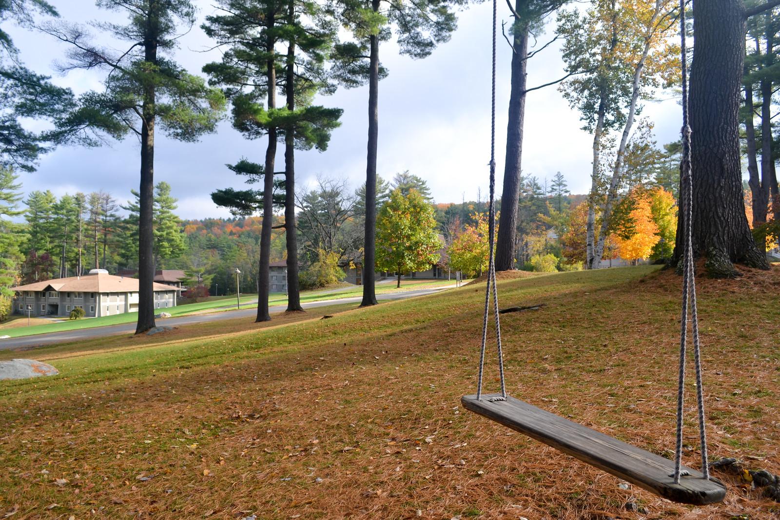campus-swing.jpg
