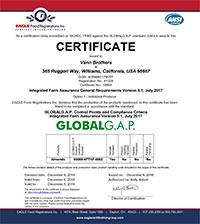 VB-Global-Gap-Certificate.jpg