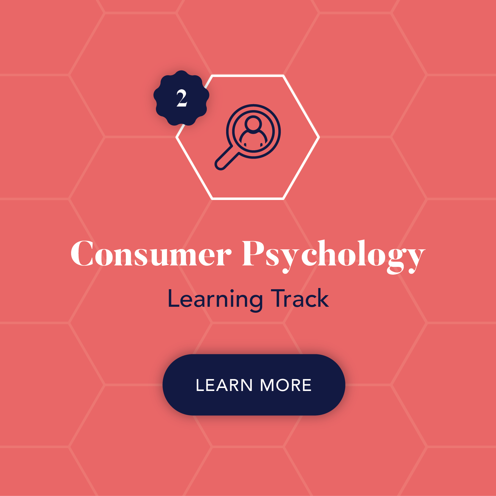Inkblot Academy Research Training Consulting Courses Consumer Psychology.png