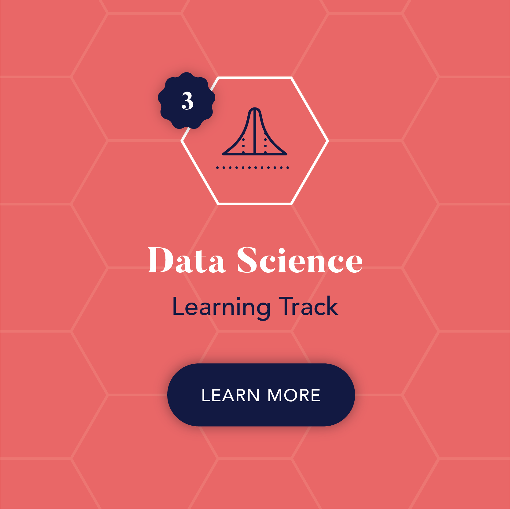 Inkblot Academy Research Training Consulting Courses Data Science.png